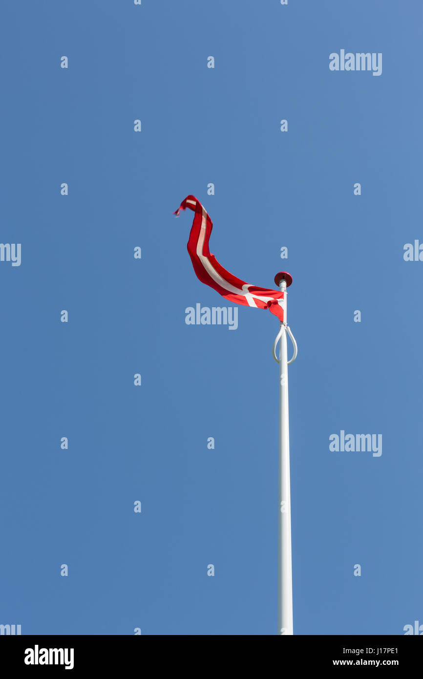 Flag of Denmark in the wind - Stock Image