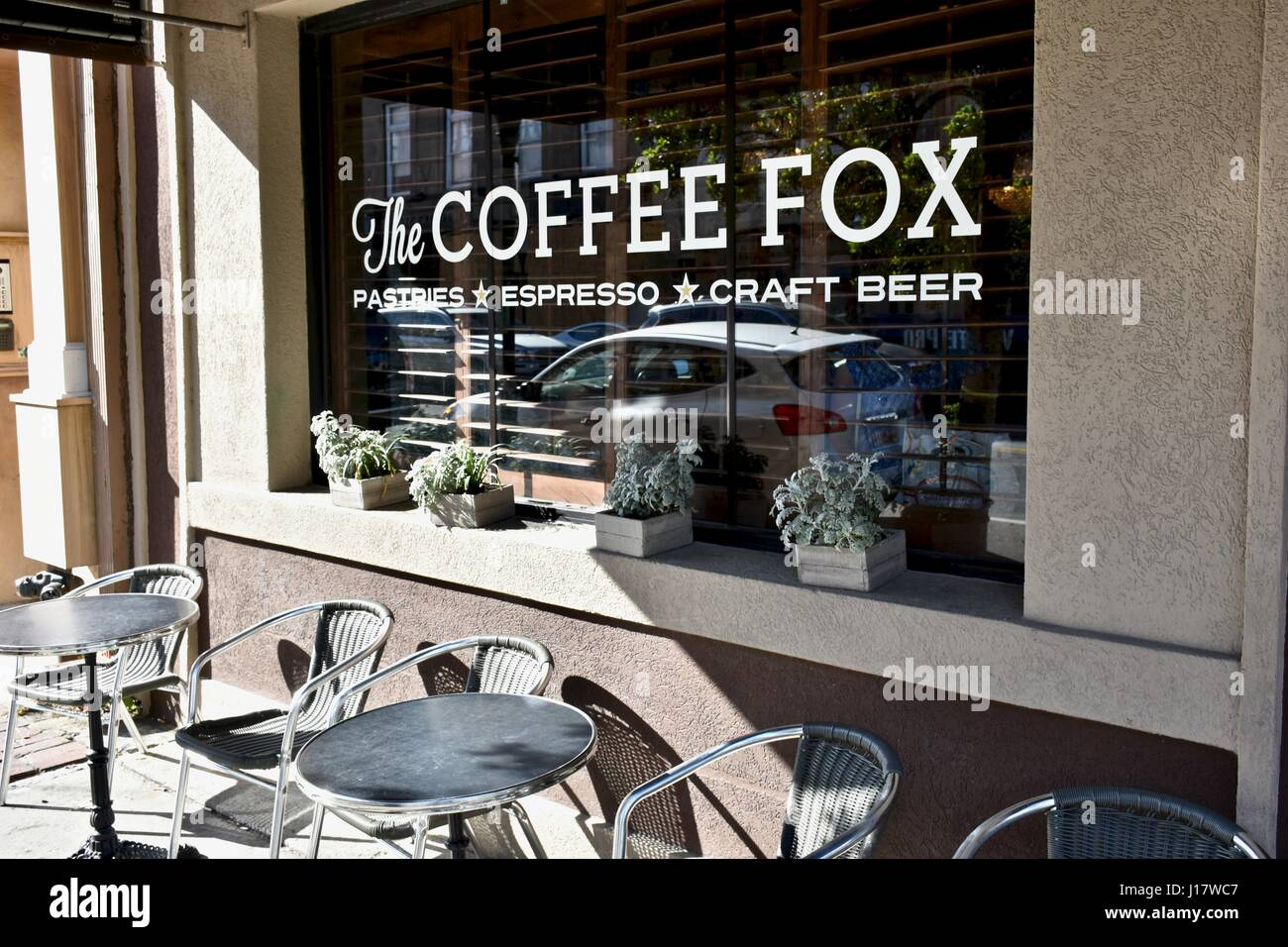 coffee fox stock photos coffee fox stock images alamy