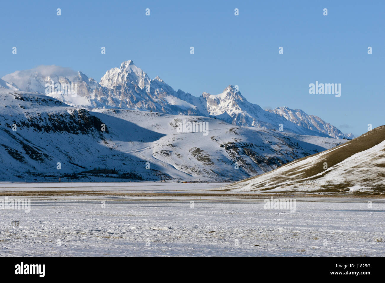 Overview over National Elk Refuge with Grand Teton Range in background on a nice winter day, Jackson Hole, Wyoming, - Stock Image