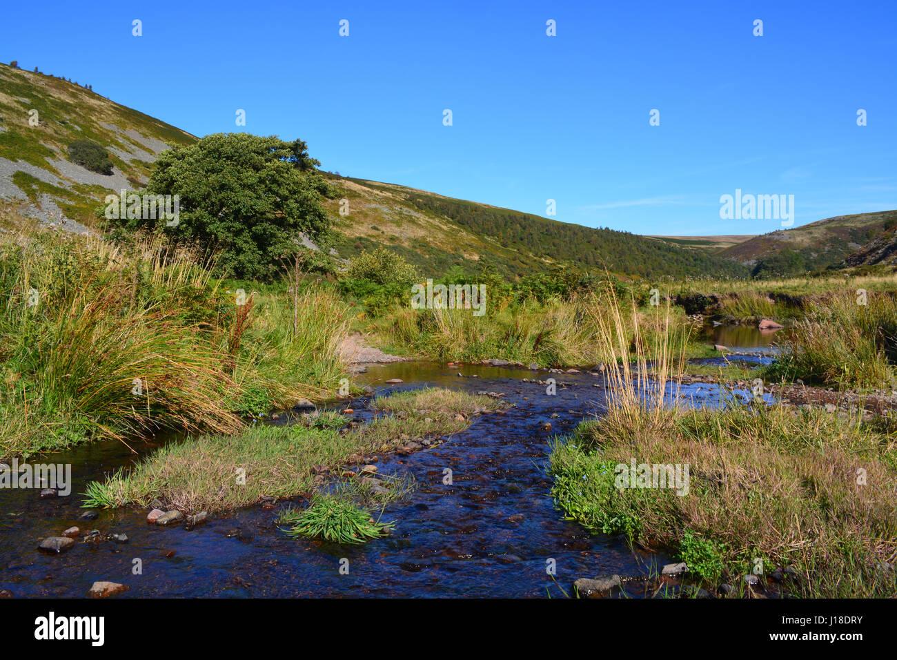 River Breamish, Ingram Valley, Northumberlan - Stock Image