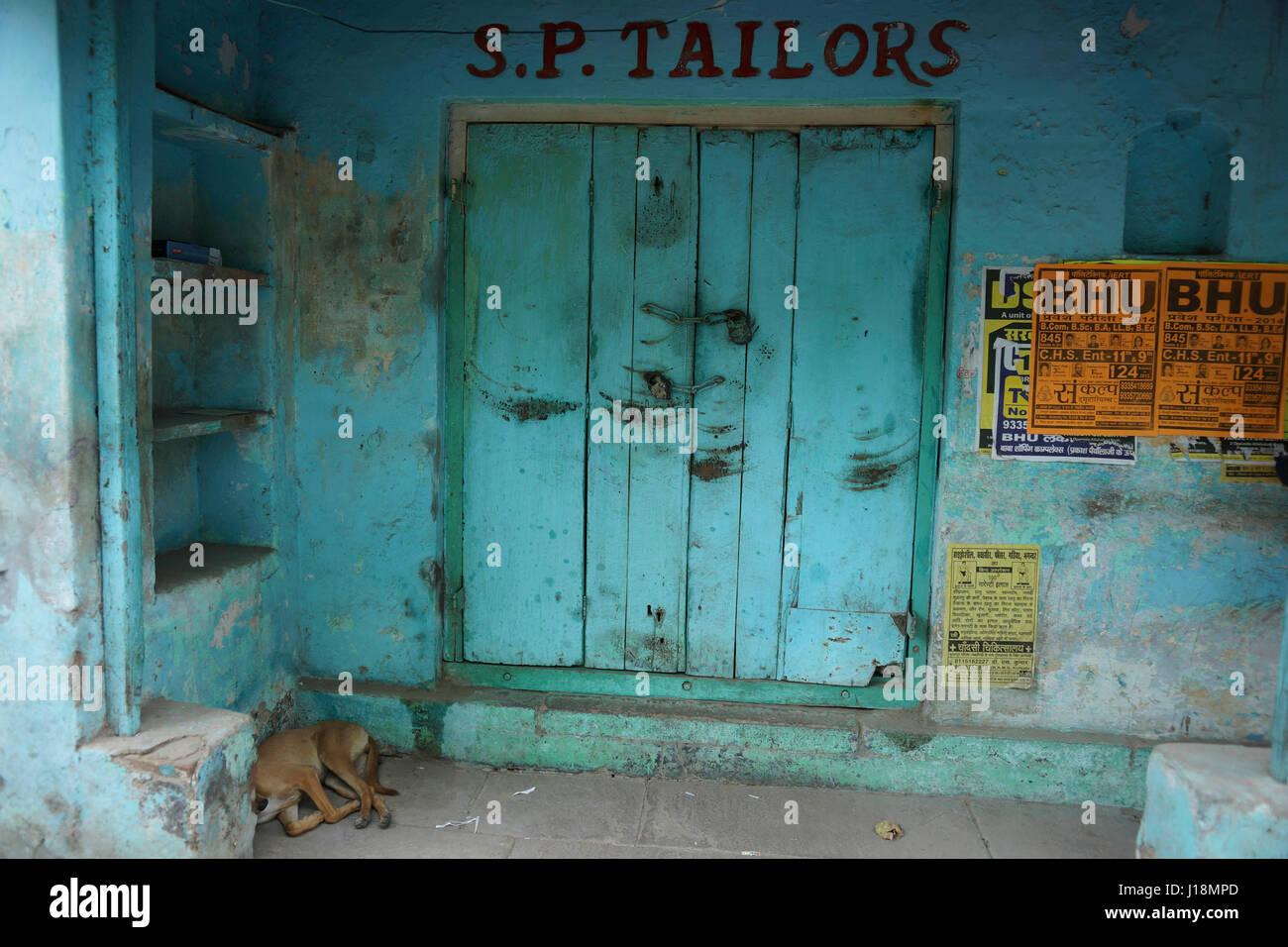 Dog sleeping in front of house, varanasi, uttar pradesh, india, asia - Stock Image