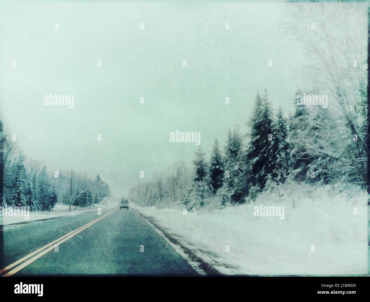 An edited version of a Canadian forest. - Stock Image