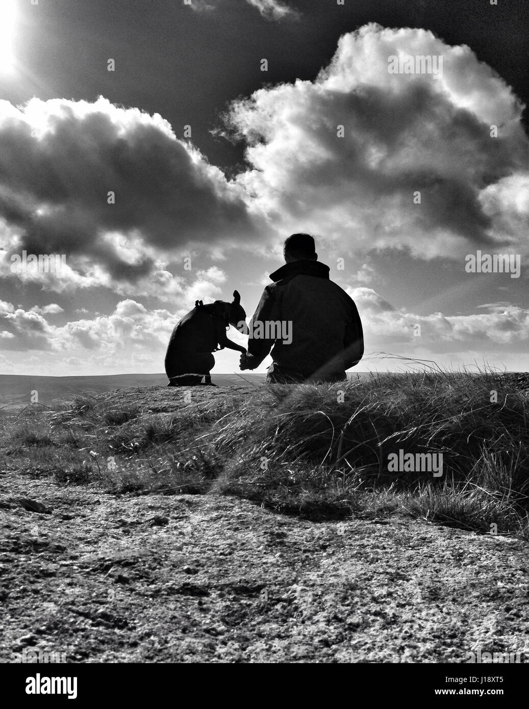 Mans best friend. Man and dog take a rest - Stock Image