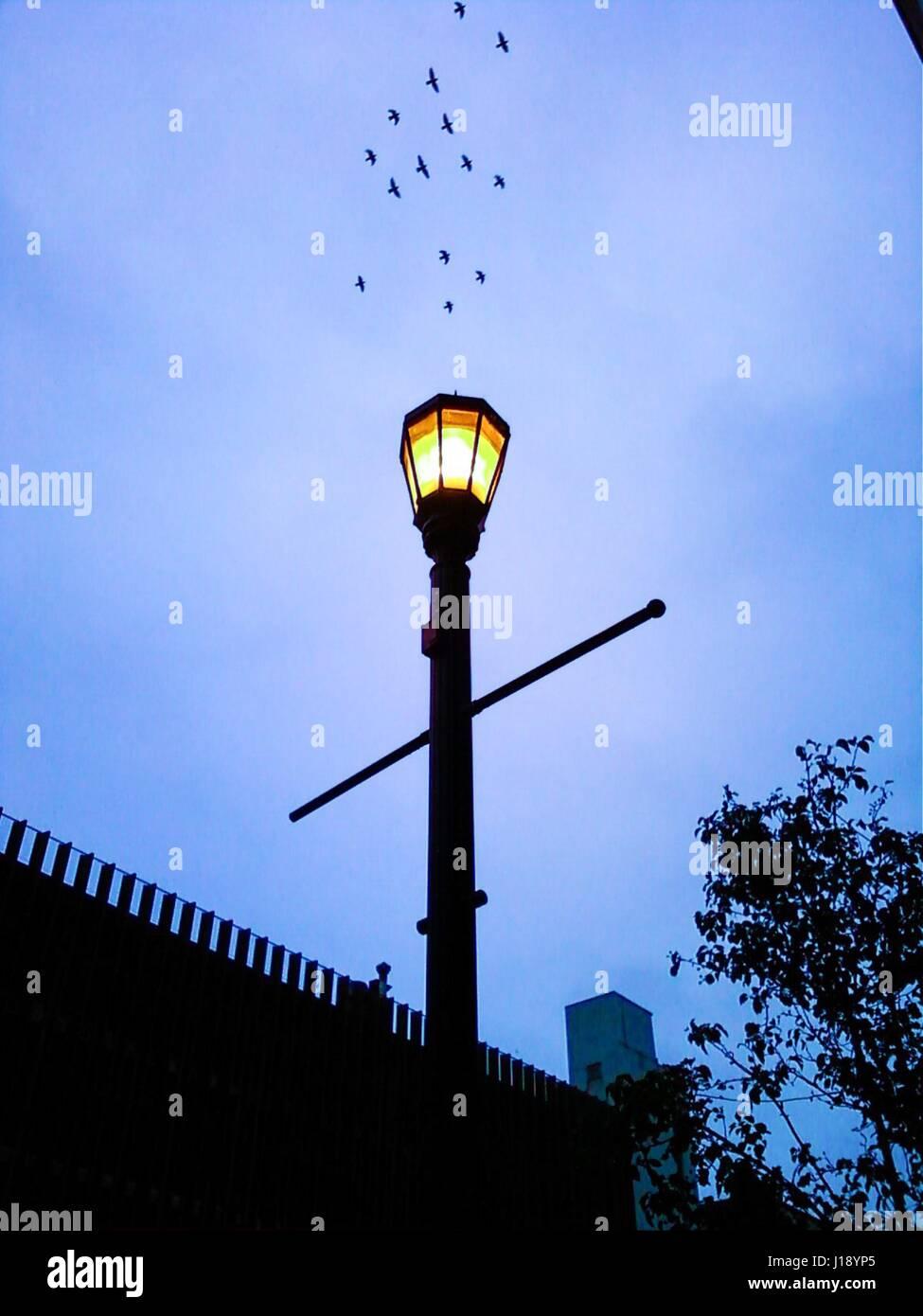 Guiding Light. Guiding Light - Stock Image