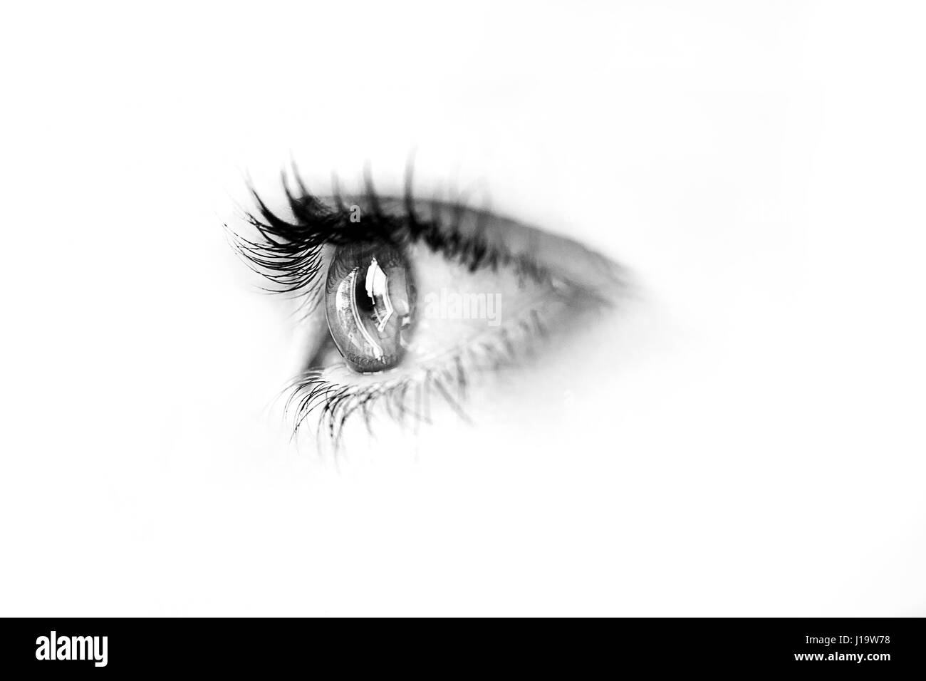 Edited eye . High quality eye picture. 1/90sec. ISO640. f/11 - Stock Image