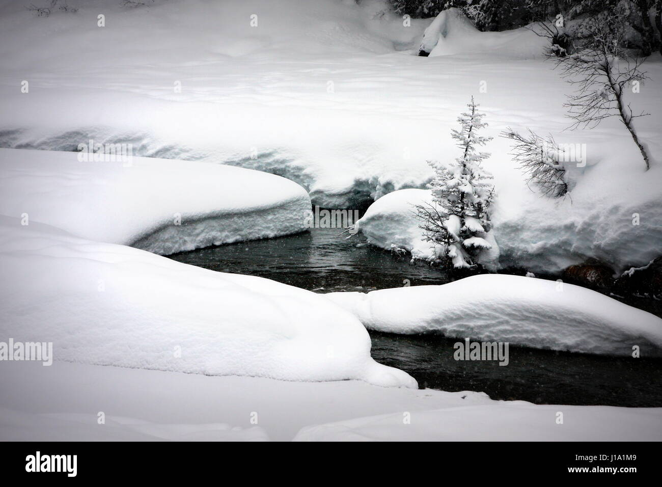 A trickle goes through its course despite heavy snow and frost in National Park Vanoise, France - Stock Image