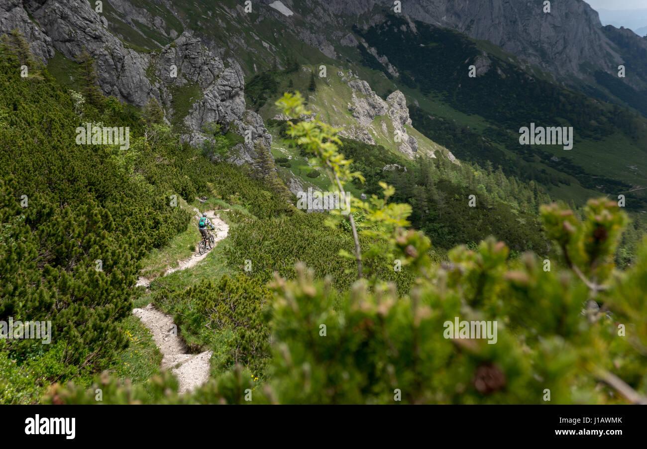 A mountain biker does off-road racing in open landscpape of Bluntautal in the Salzburg region of Austria. - Stock Image