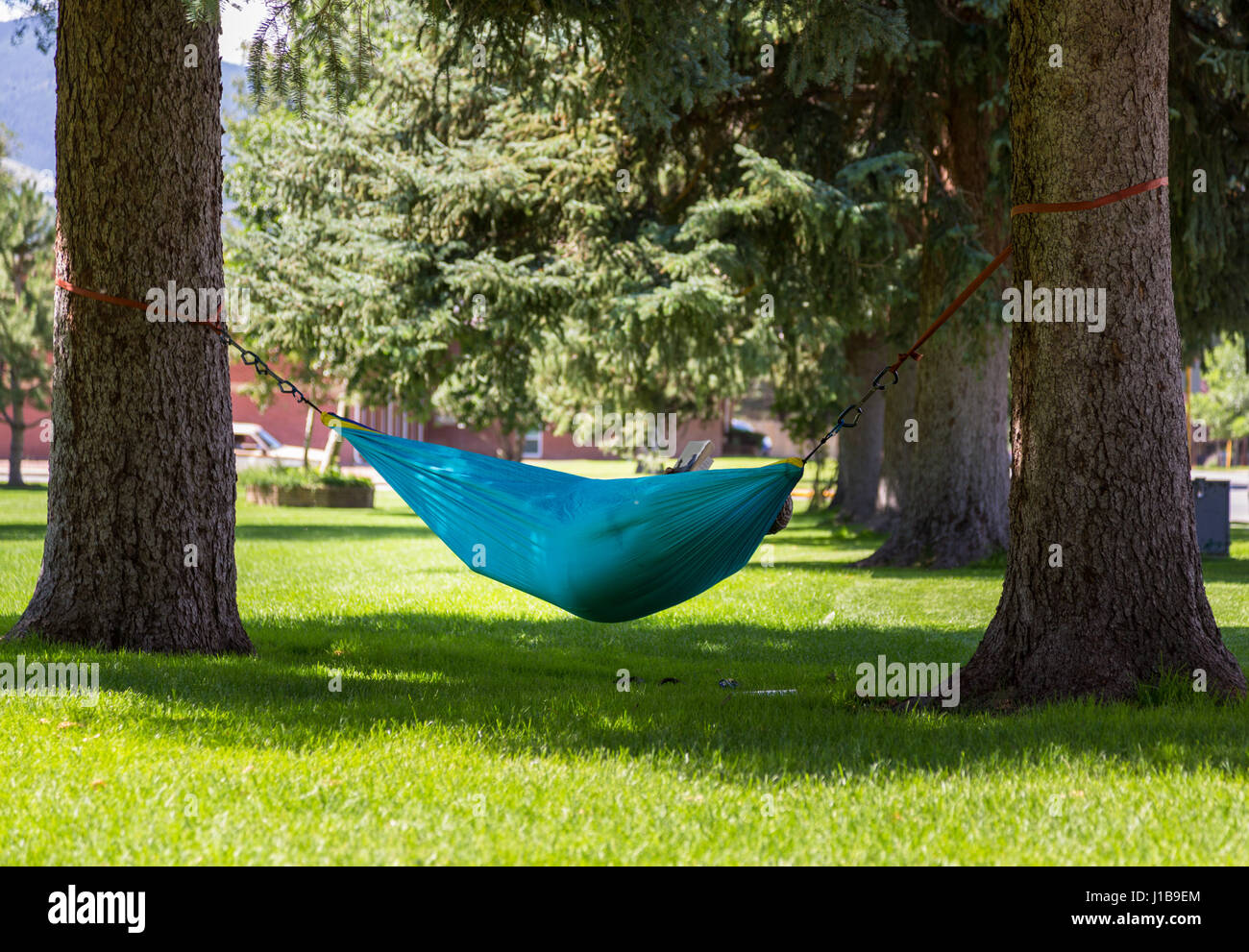 Large person relaxing reading in a hammock in a city park in Colorado, USA in summer - Stock Image