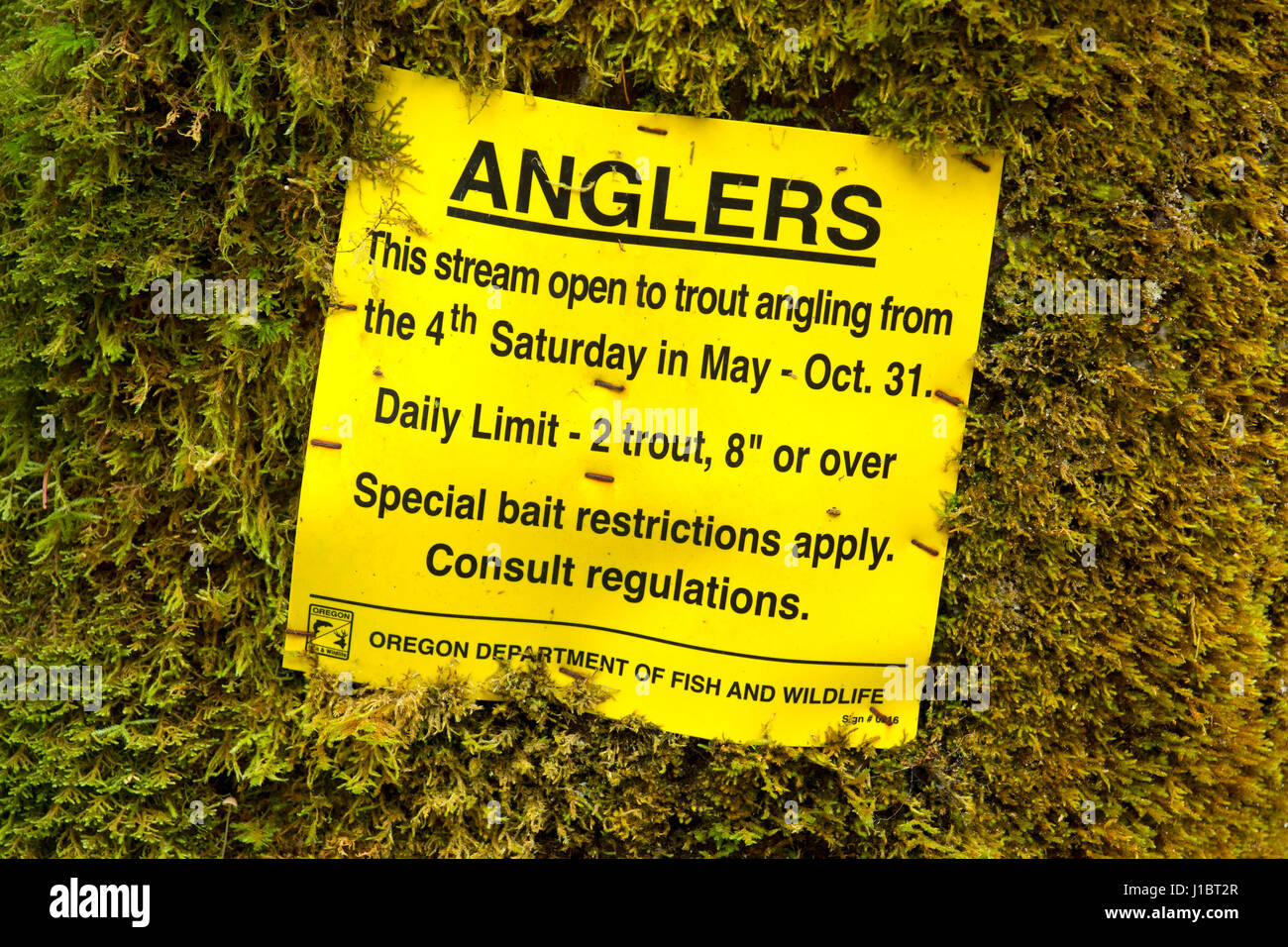 Fishing regulation sign at Ermie Walters Boat Ramp, Siuslaw National Forest, Oregon - Stock Image