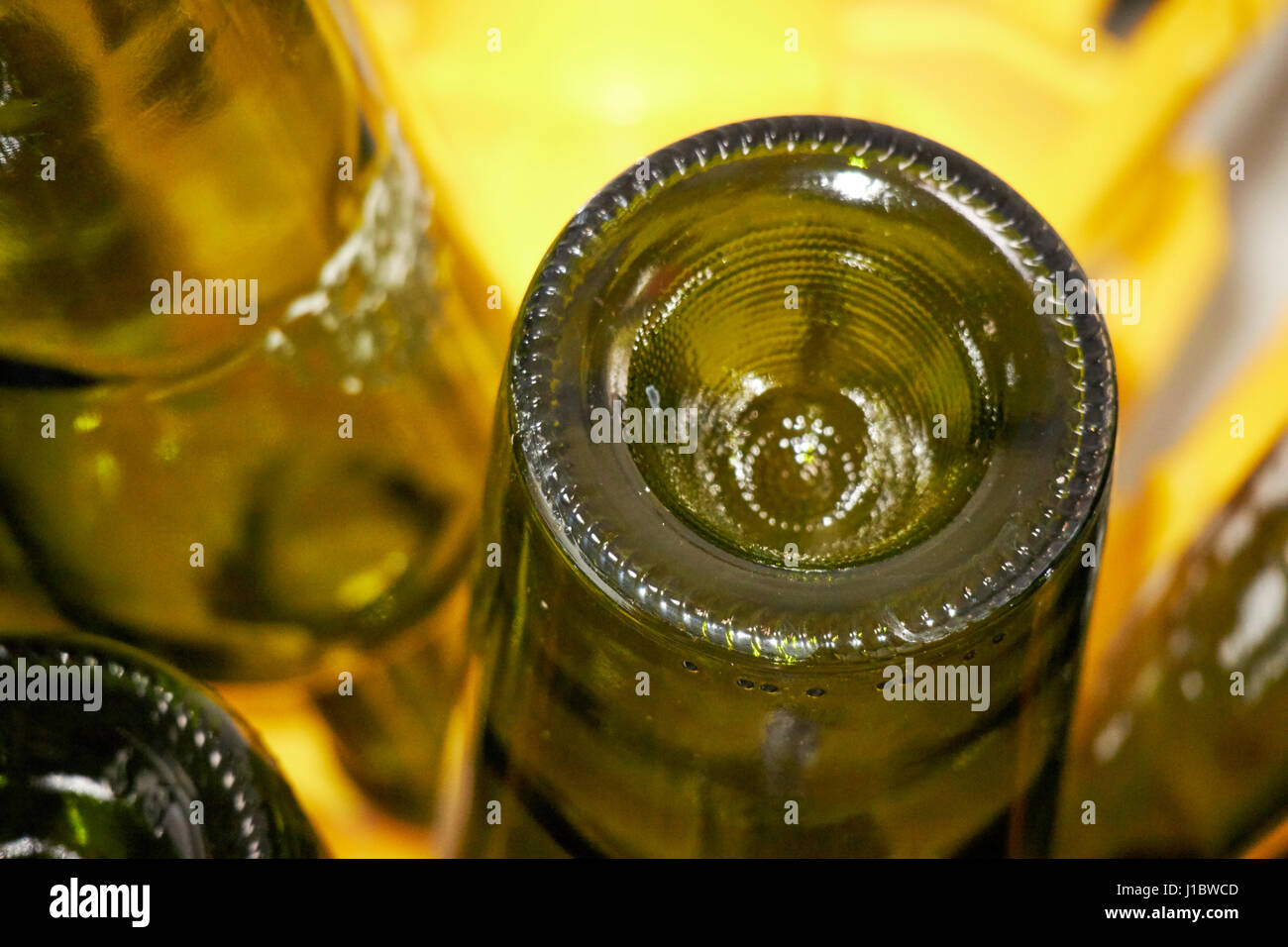 used wine bottles drying on a bottle tree for home wine production - Stock Image