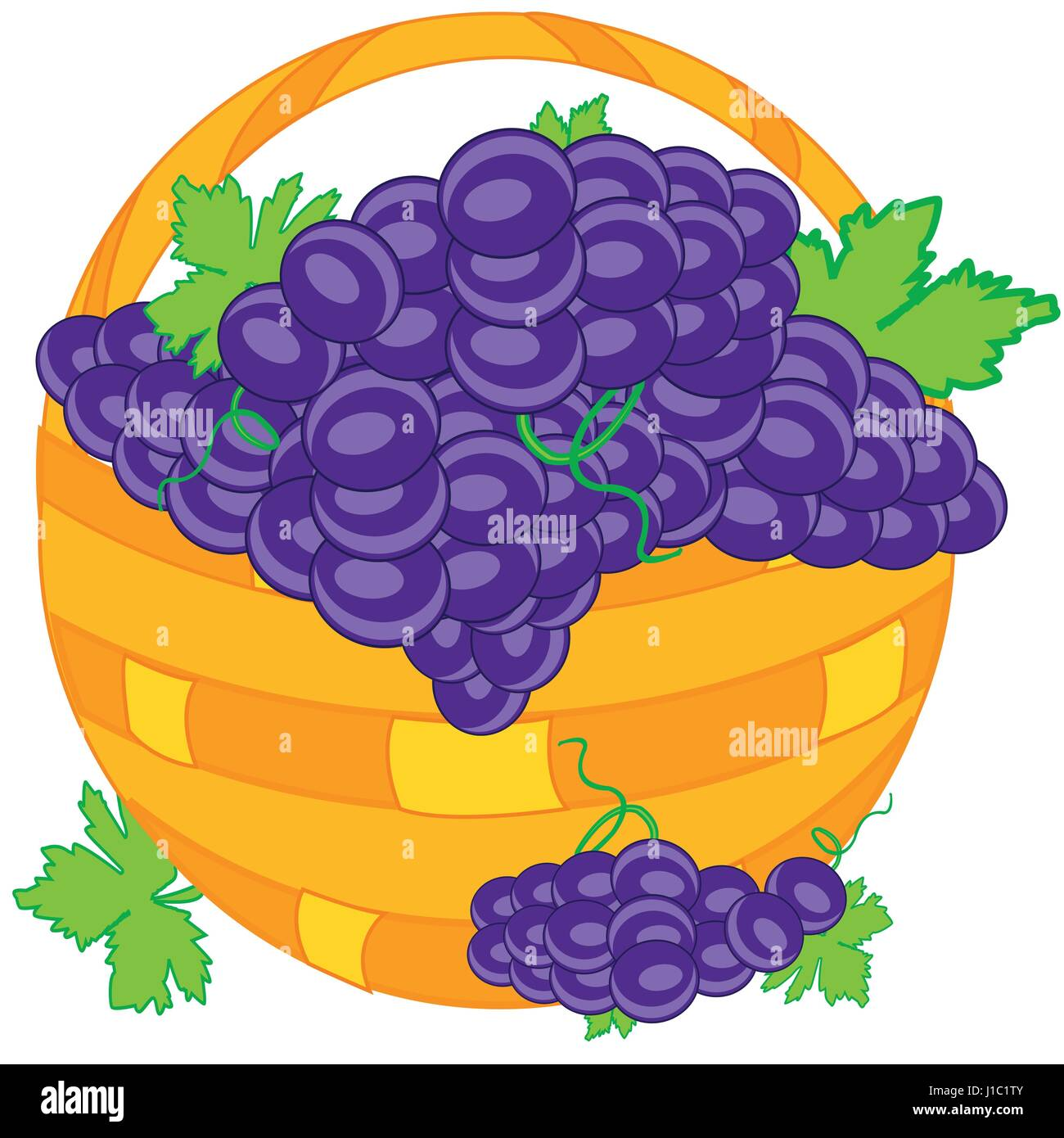 Basket with grape - Stock Vector