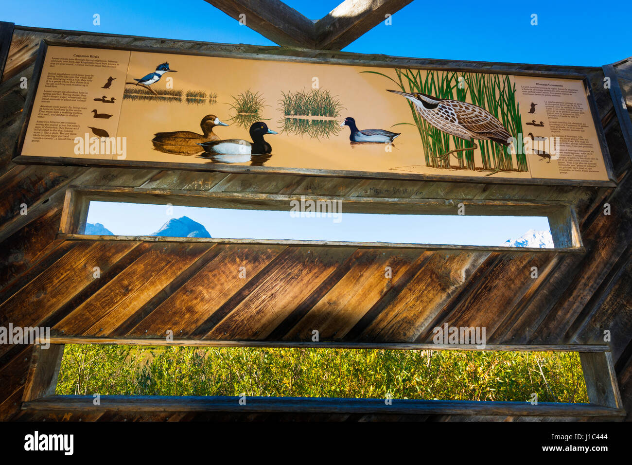 Interpretive sign in a wildlife blind at Cave and Basin National Historic Site, Banff National Park, Alberta, Canada Stock Photo