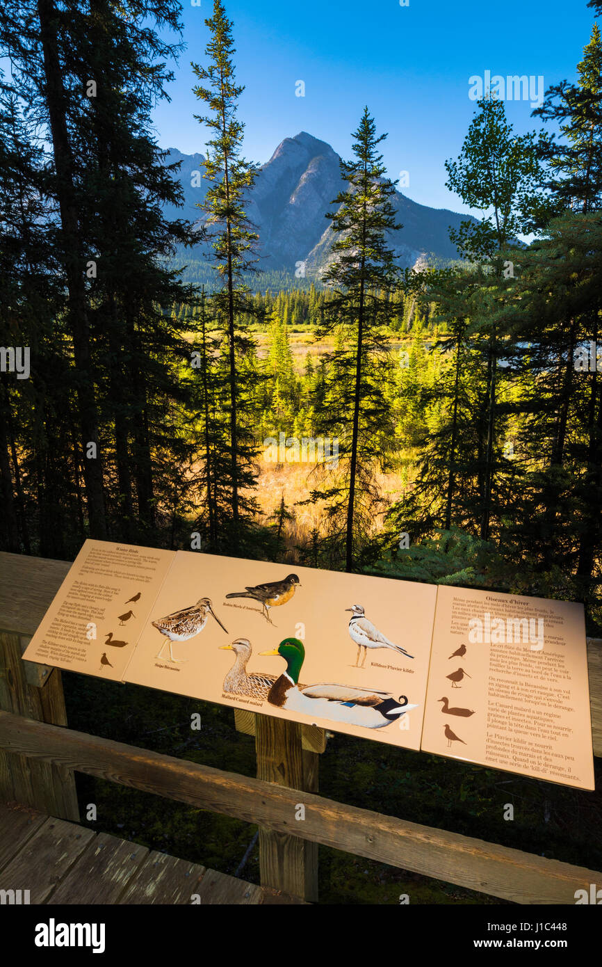 Interpretive sign at Cave and Basin National Historic Site, Banff National Park, Alberta, Canada Stock Photo