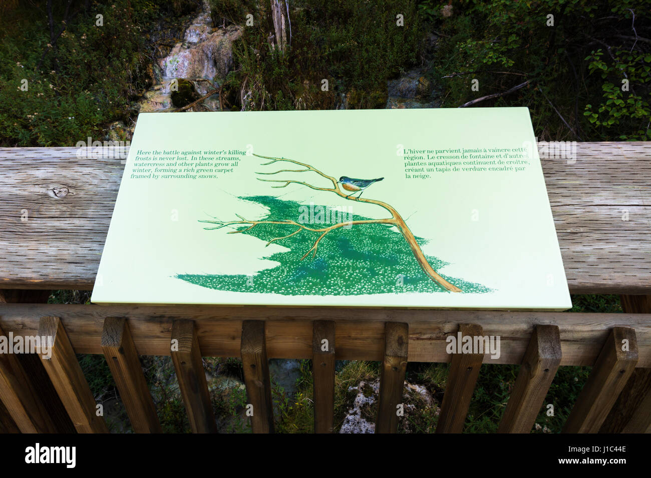 Interpretive sign at Cave and Basin National Historic Site, Banff National Park, Alberta, Canada - Stock Image