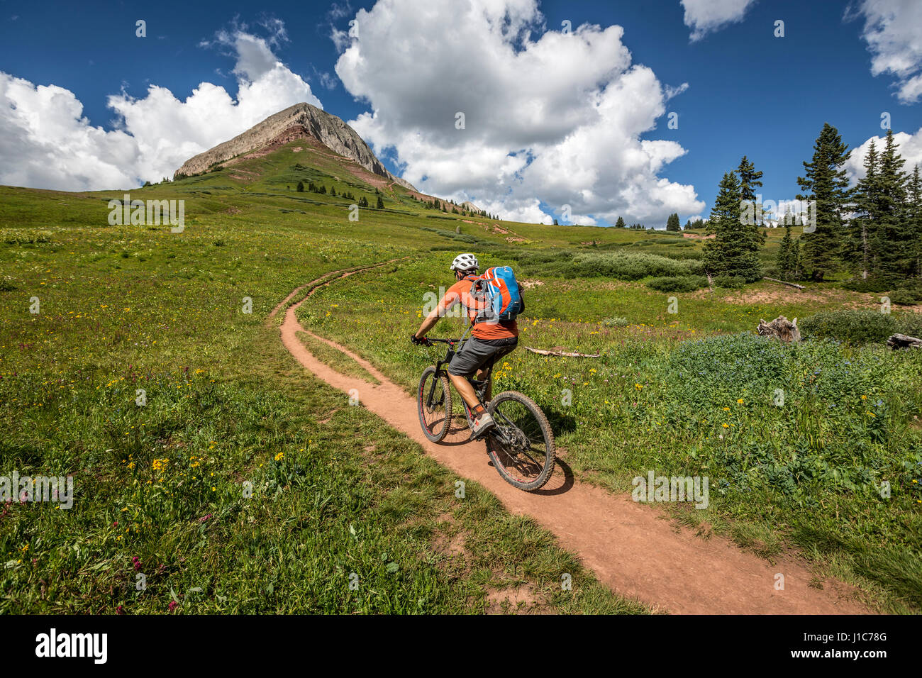 Eric Odenthal mountain biking up the Pass trail towards Engineer Mountain, Colorado. - Stock Image