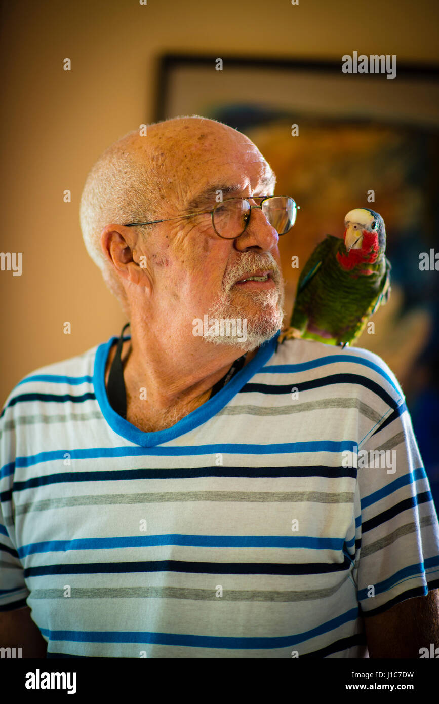 An old man and his pet parrot in Havana Cuba - Stock Image