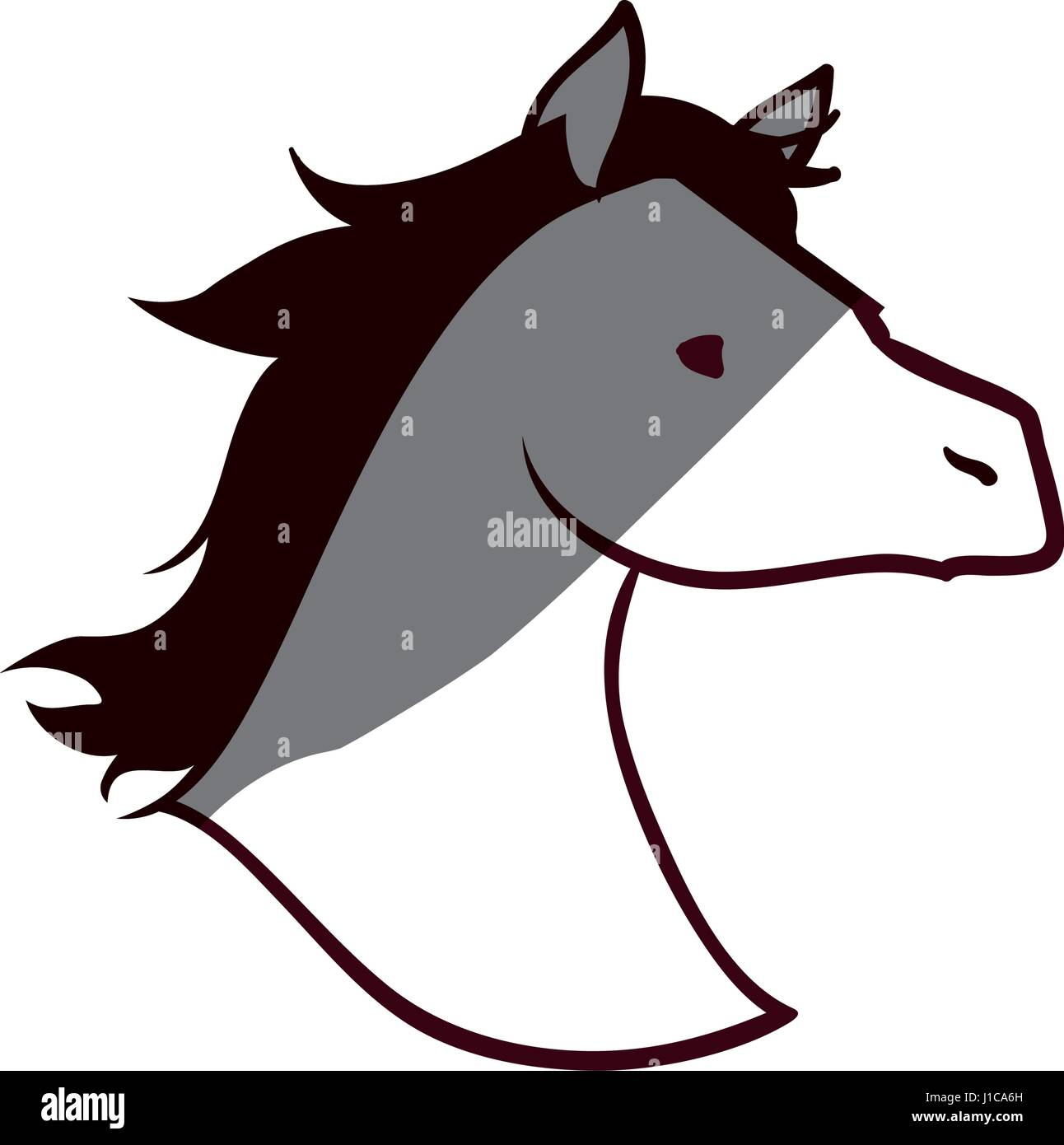 Head Horse Silhouette High Resolution Stock Photography And Images Alamy