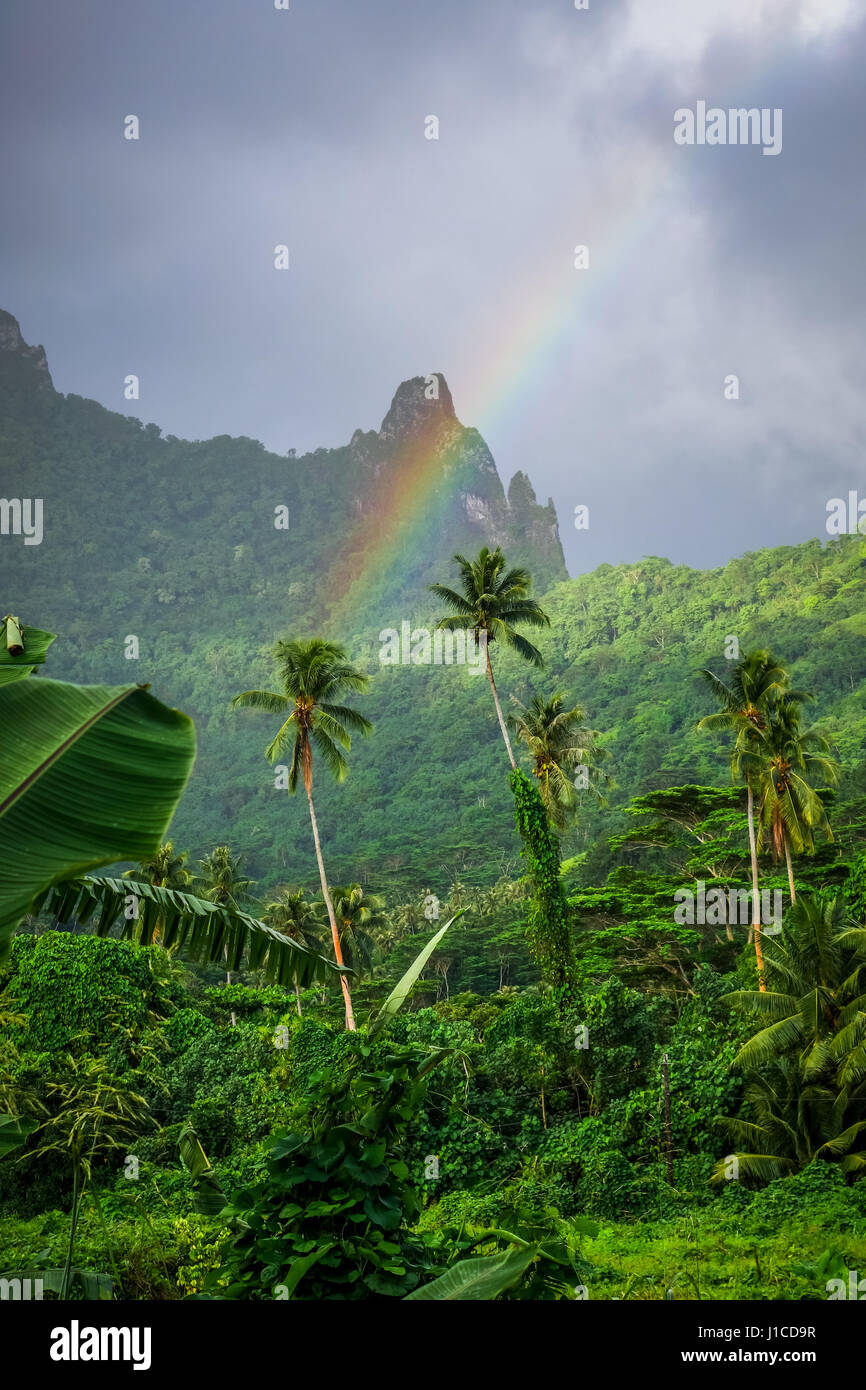 Rainbow on Moorea island jungle and mountains landscape. French Polynesia - Stock Image