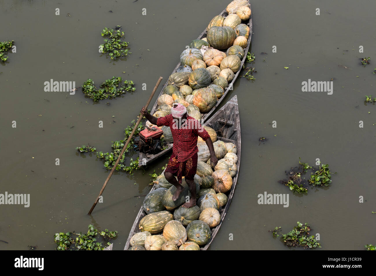 Boats with pumpkins are waiting for unload at Arial Beel. Munshiganj, Bangladesh. - Stock Image