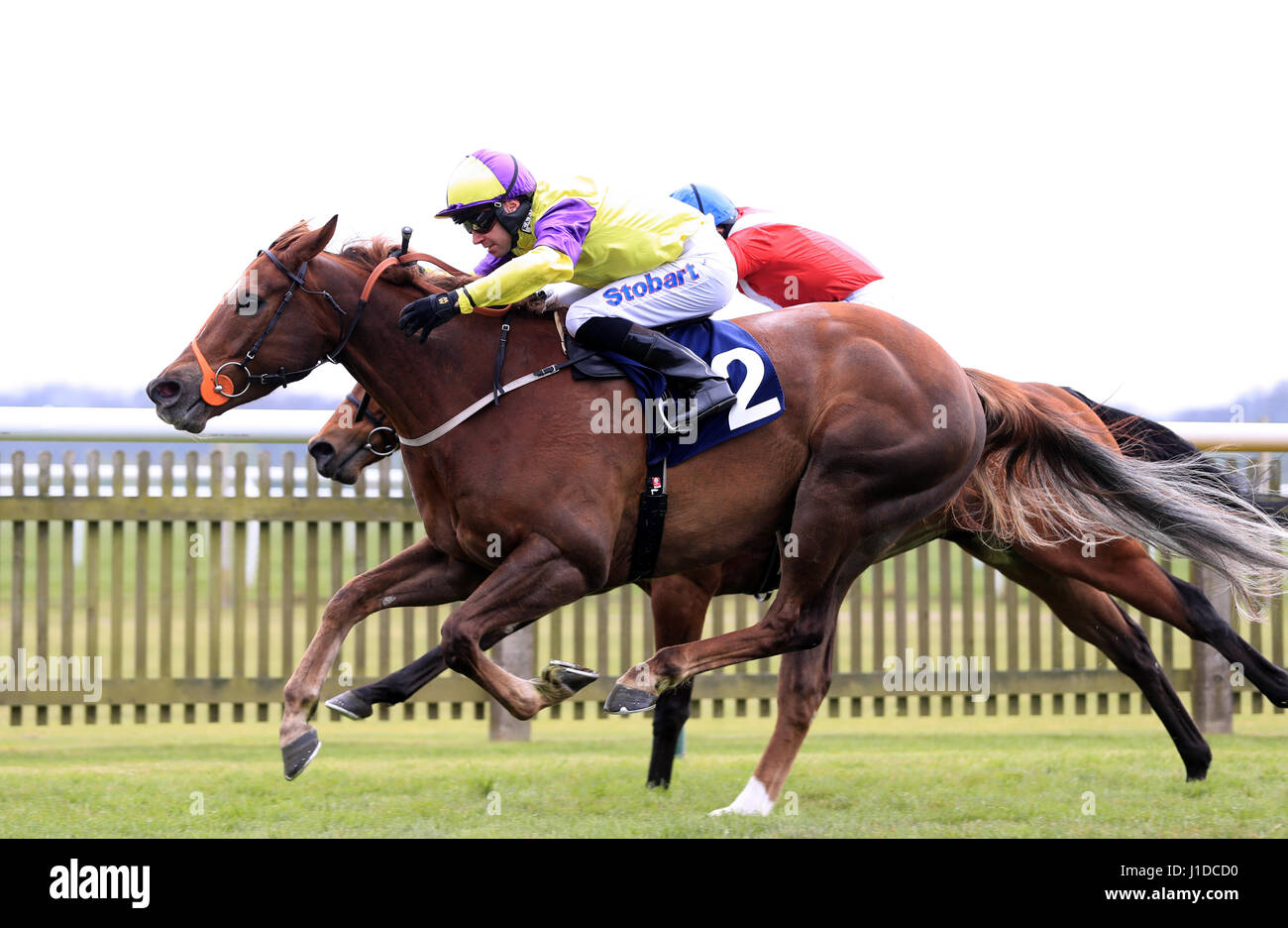 Jockey Tom Eaves on board Brando (nearside) wins the Connaught Access Flooring Abernant Stakes during day three - Stock Image