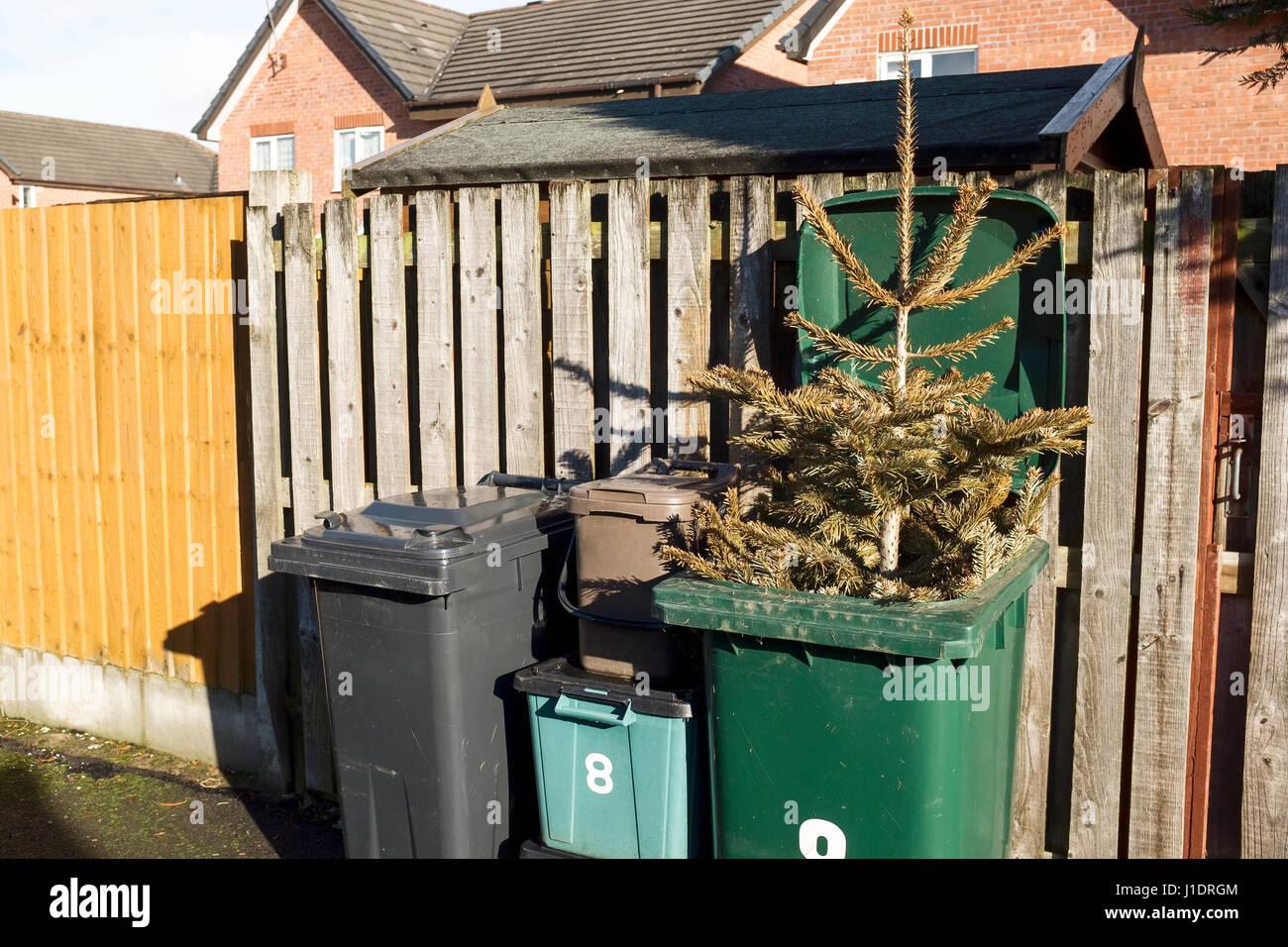 Christmas Rubbish Stock Photos Christmas Rubbish Stock Images Alamy