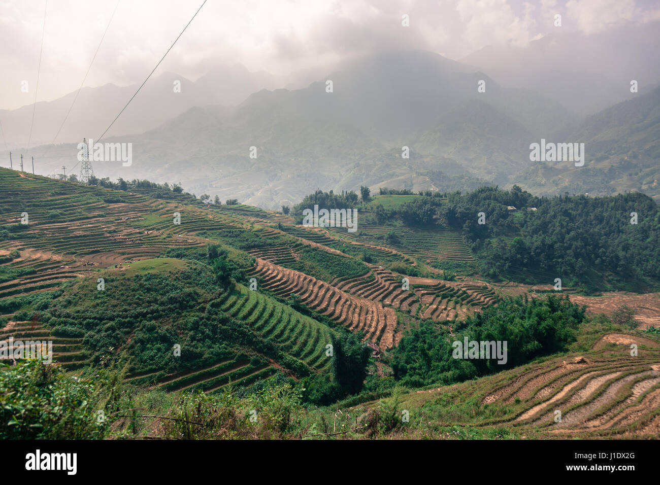 The mountain rice terraces of Sa Pa (Sapa) in northern Vietnam, southeast Asia - Stock Image