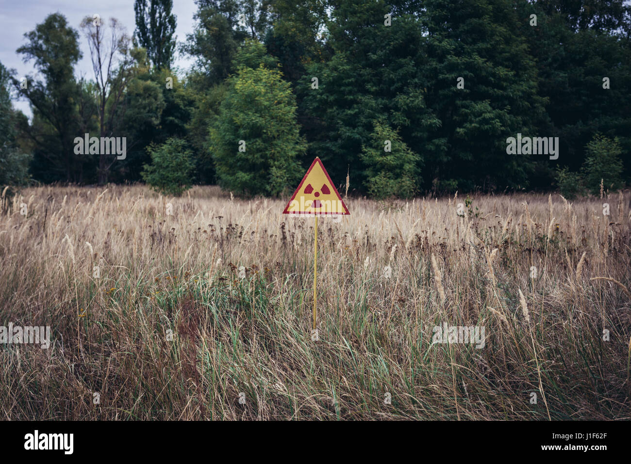 Ionising radiation warning sign in so called Red Forest area surrounding Chernobyl Nuclear Power Plant, Zone of - Stock Image