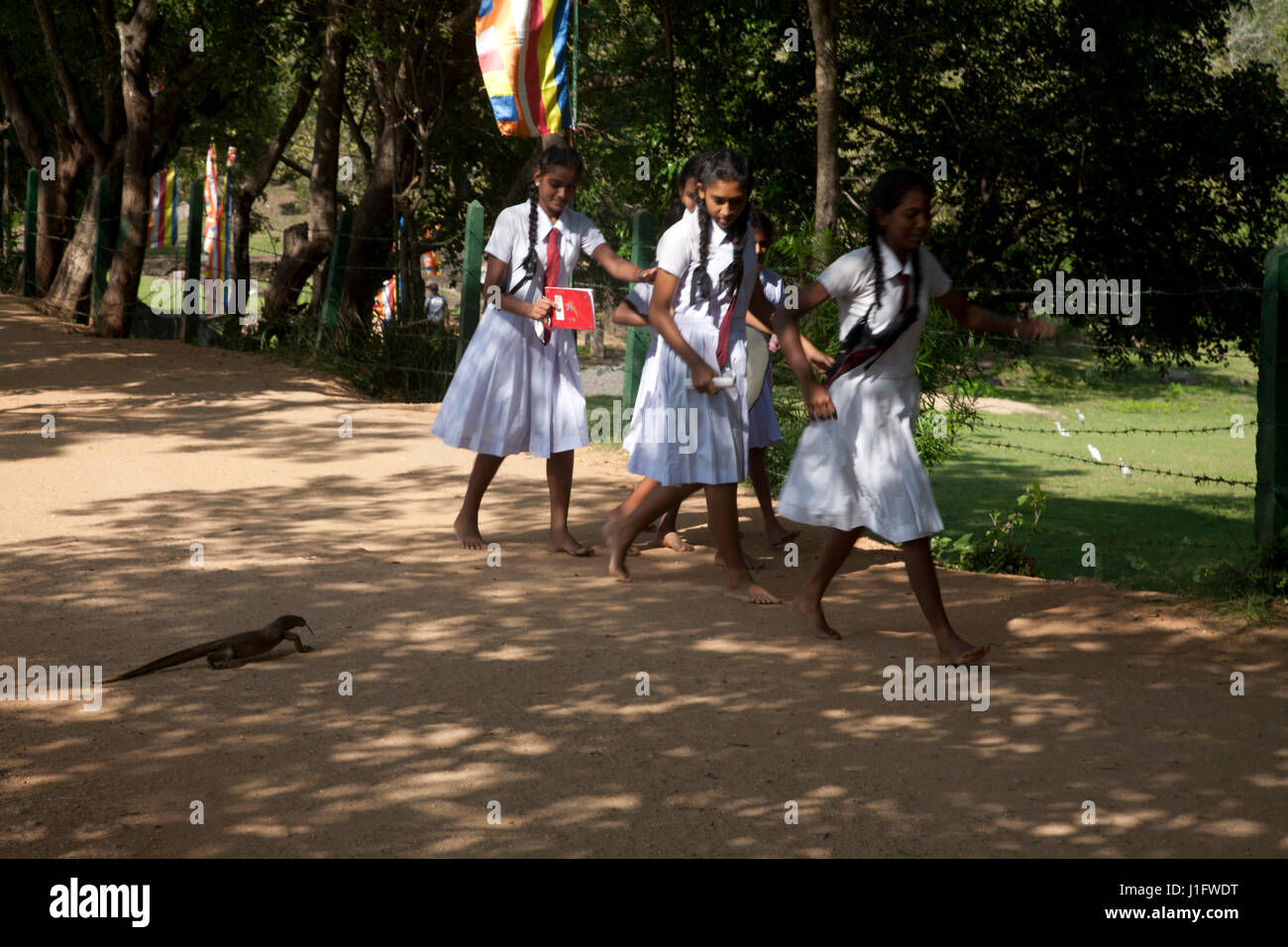 polonnaruwa north central province sri lanka - Stock Image