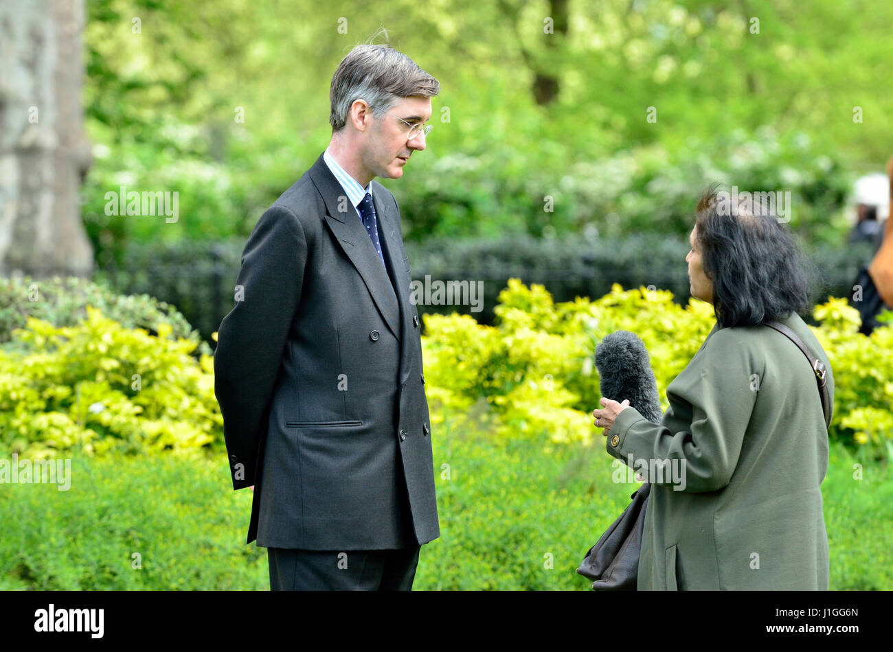 Jacob Rees-Mogg MP (Con: North East Somerset) interviewed on College Green, Westminster 18th April 2017 shortly - Stock Image