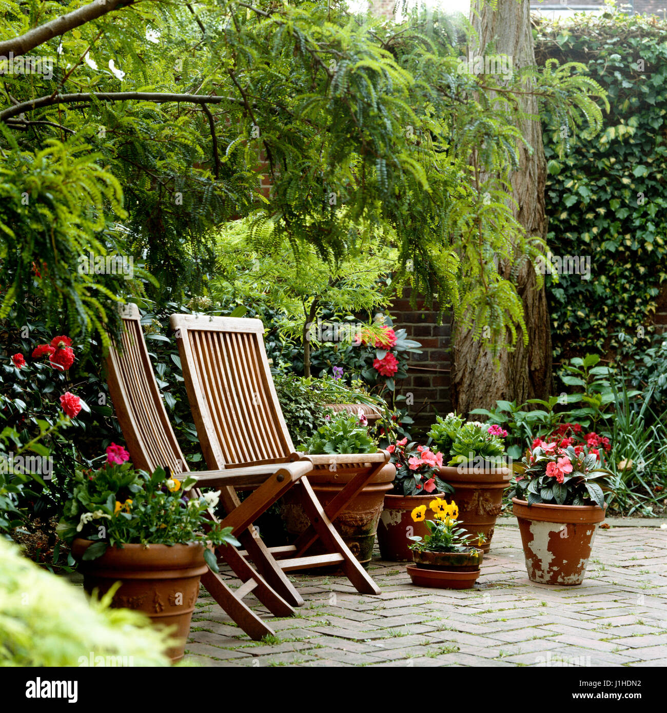 Deck chairs on patio. - Stock Image