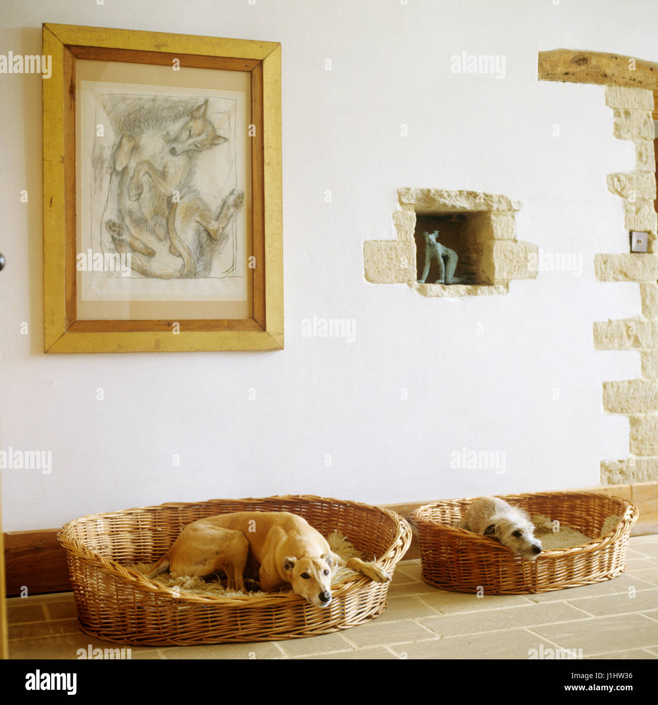 Two dogs lying in dog beds. - Stock Image