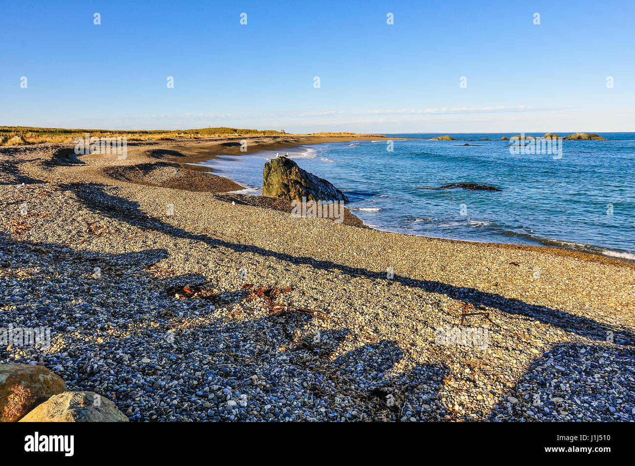 Empty beach in the Southern Scenic Route, New Zealand - Stock Image