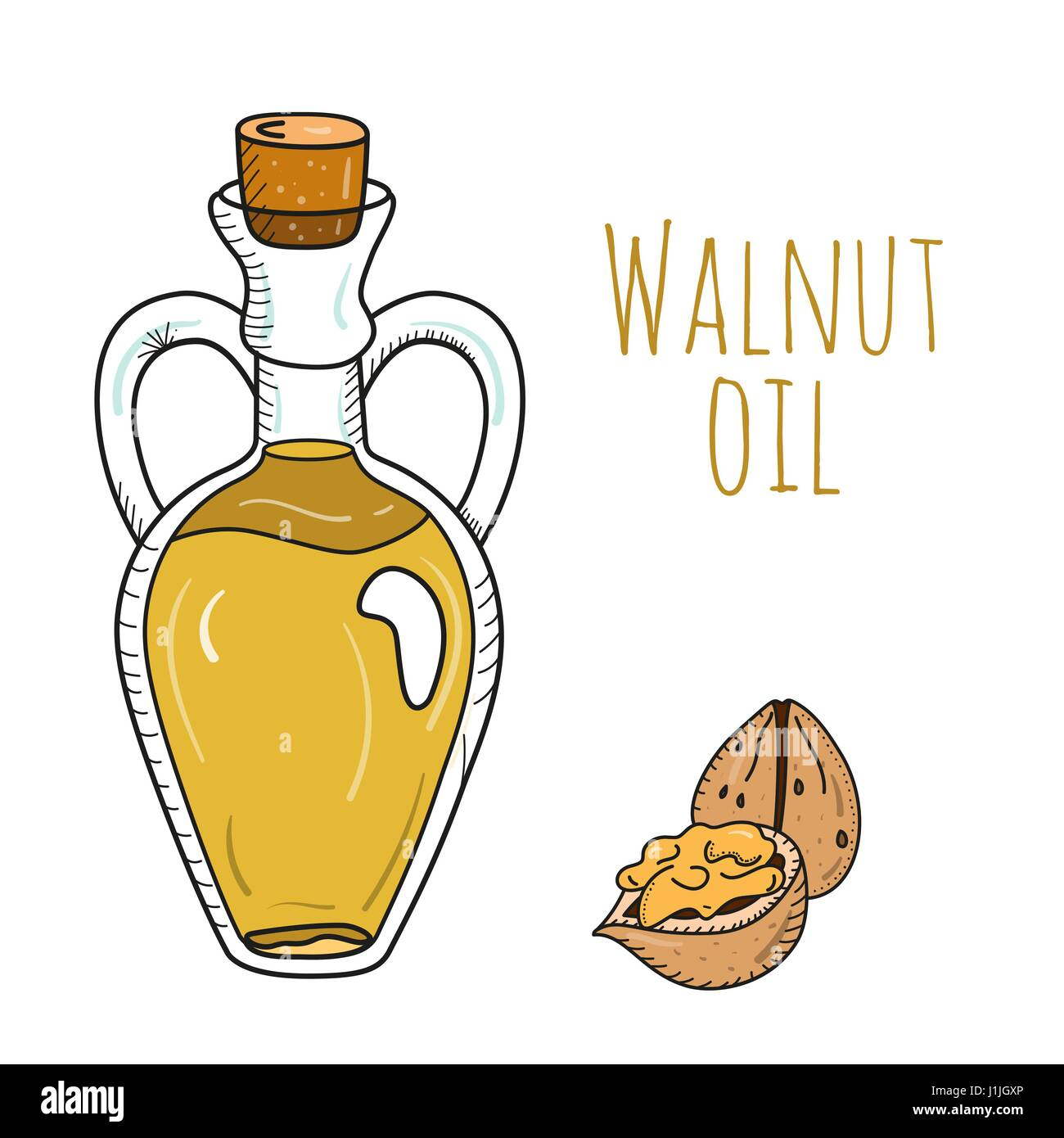 Colorful hand drawn walnut oil bottle - Stock Vector