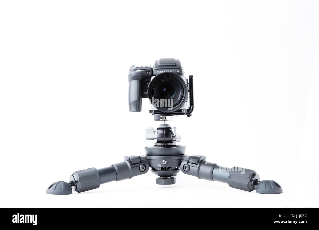 Hasselblad H5D-50c on HiHat Tripod - Stock Image