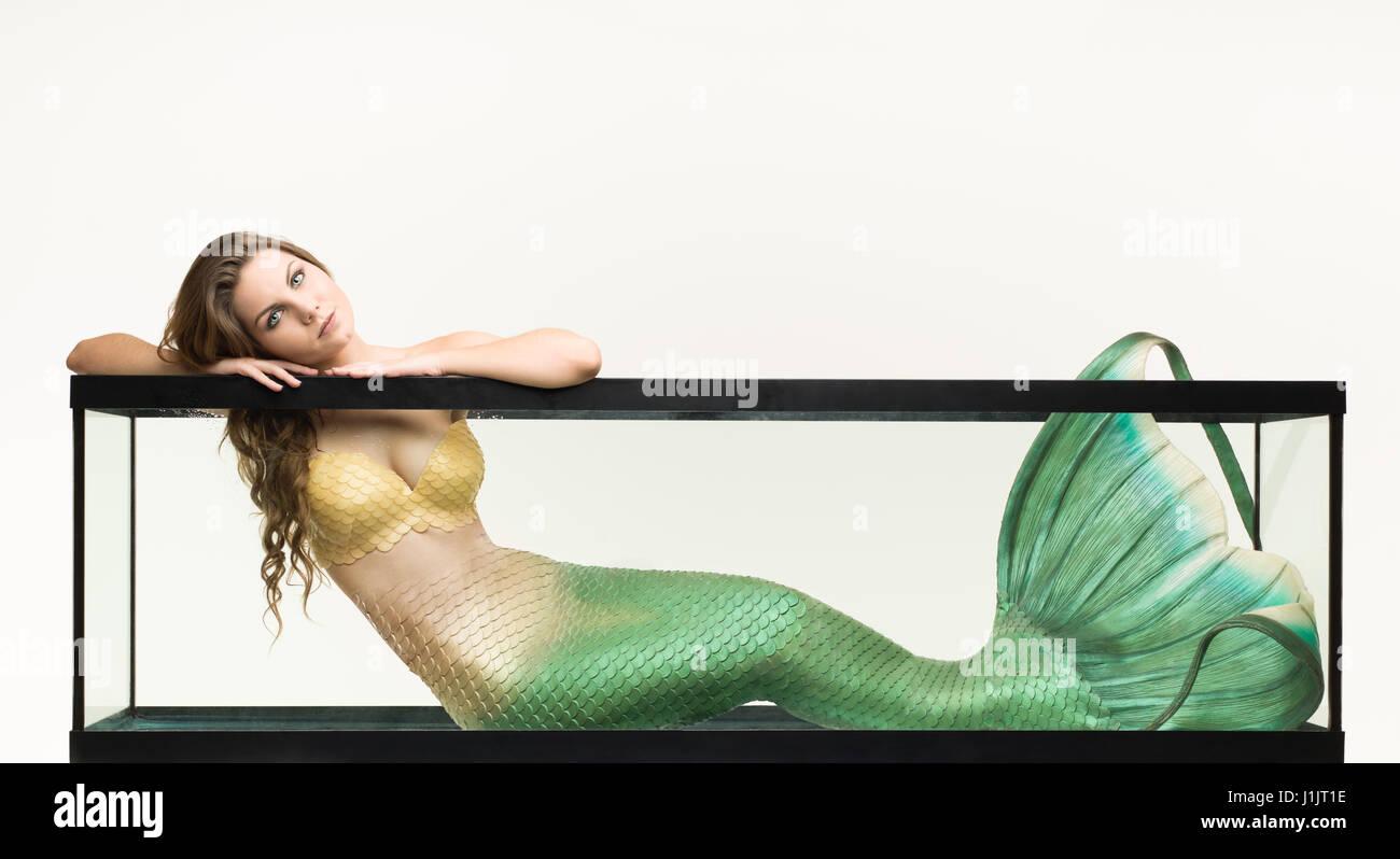 Mermaid in an aquarium - Stock Image