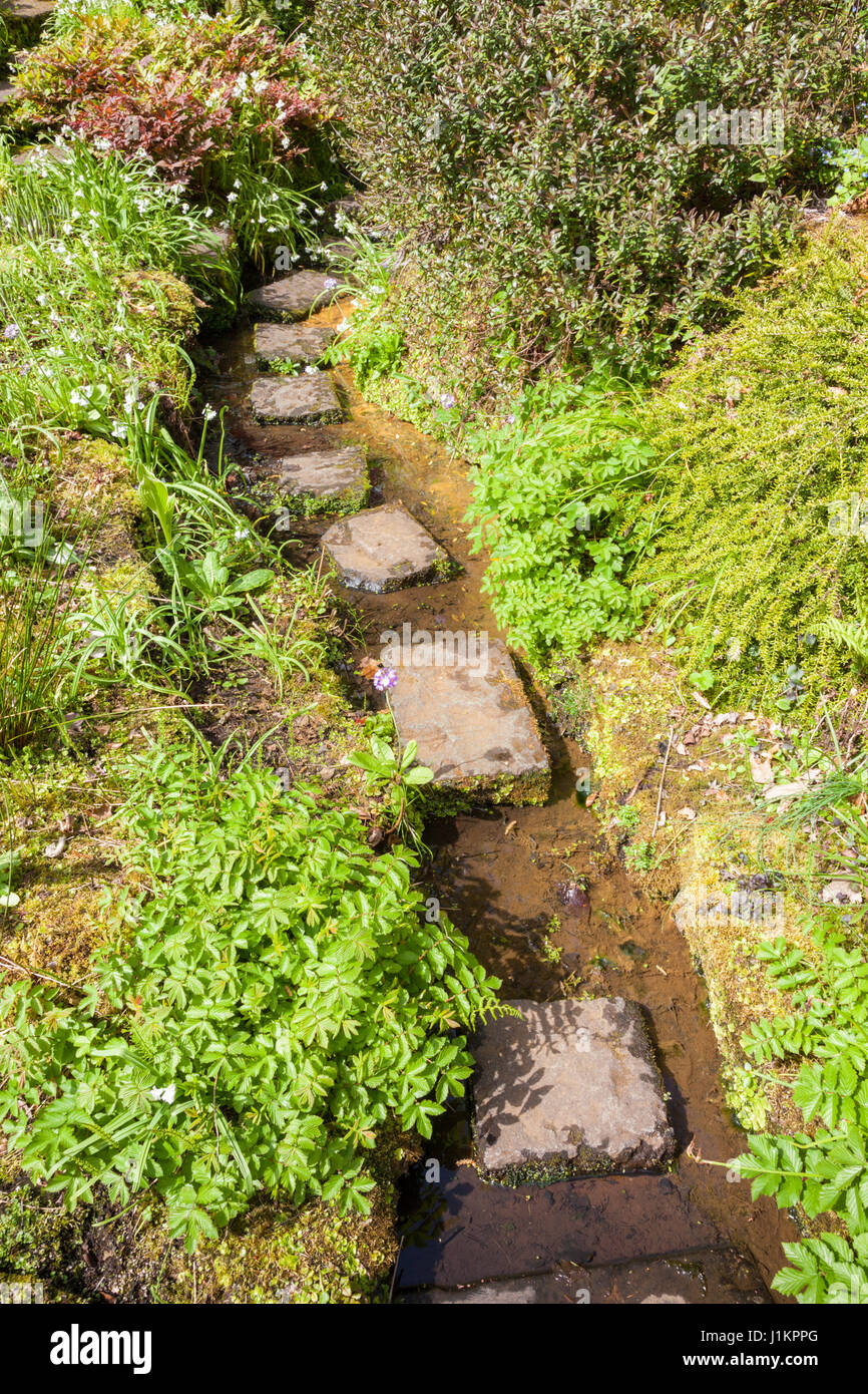 garden stepping stones stock  garden stepping