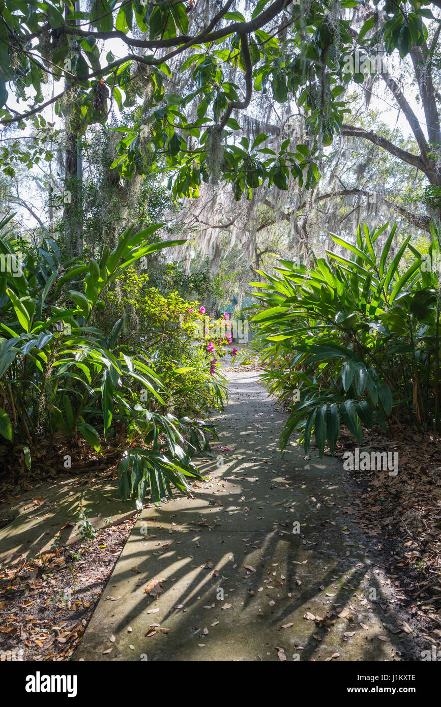 Matheson Museum is a repository of local historical information in Gainesville, Florida. - Stock Image