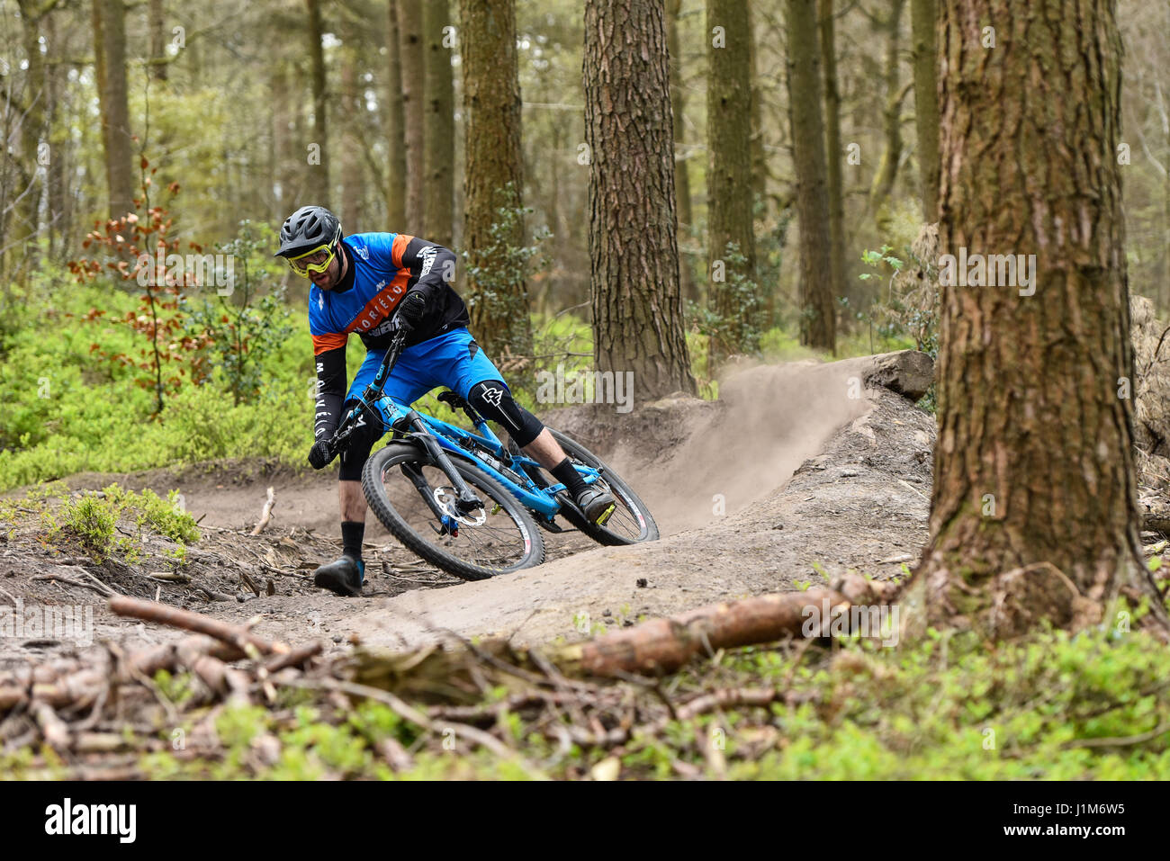 Mountain biking in Surrey hills - action shot - Stock Image