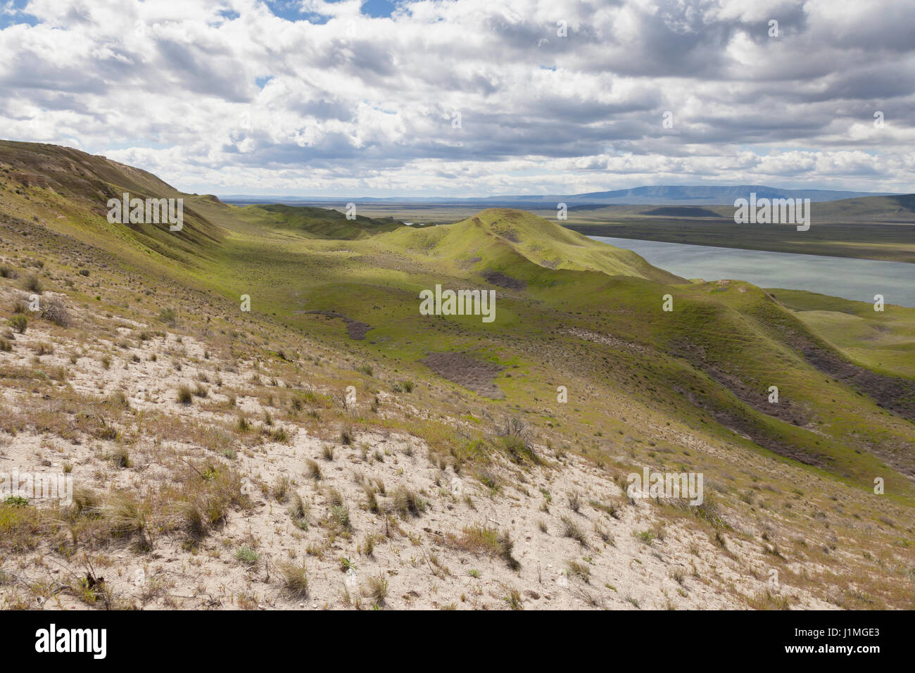 Franklin County, Washington: The White Bluffs along the Columbia River in Hanford Reach National Monument. Across - Stock Image
