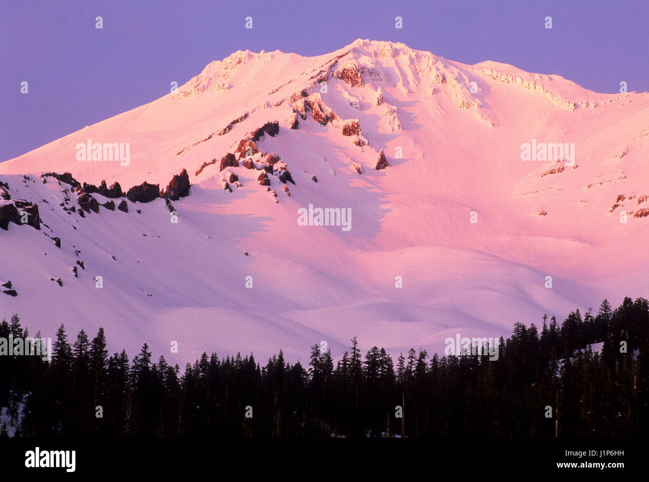Mount Shasta from Bunny Flat, Shasta-Trinity National Forest, California - Stock Image