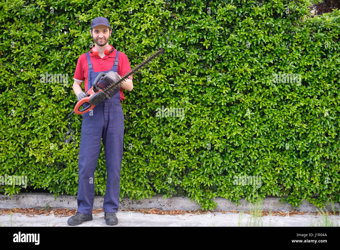 Professional gardner dressed with safety overalls using an hedge clipper - Stock Image