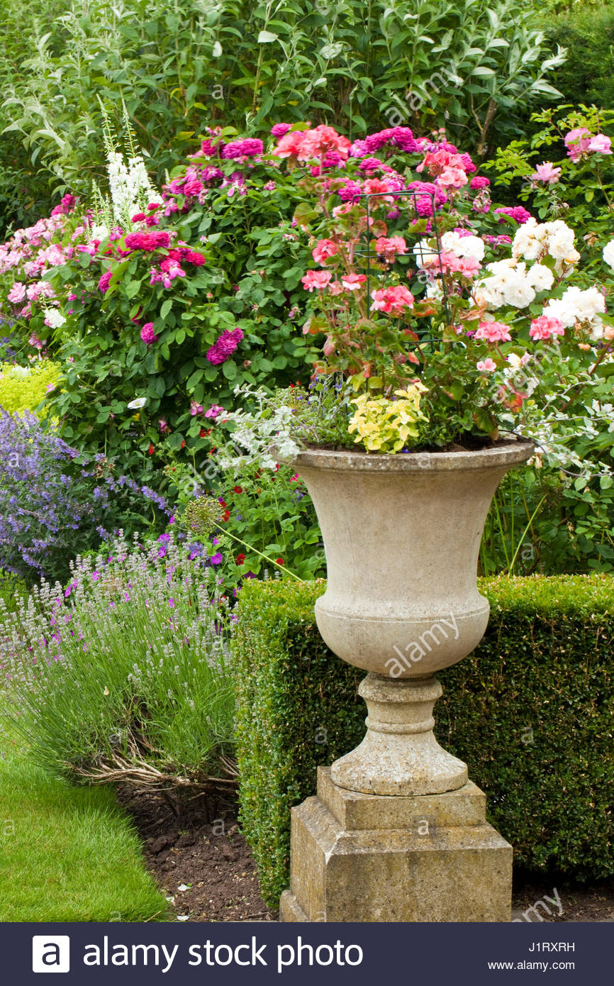 Ornate container with summer flowering annuals at wilkins pleck ornate container with summer flowering annuals at wilkins pleck izmirmasajfo