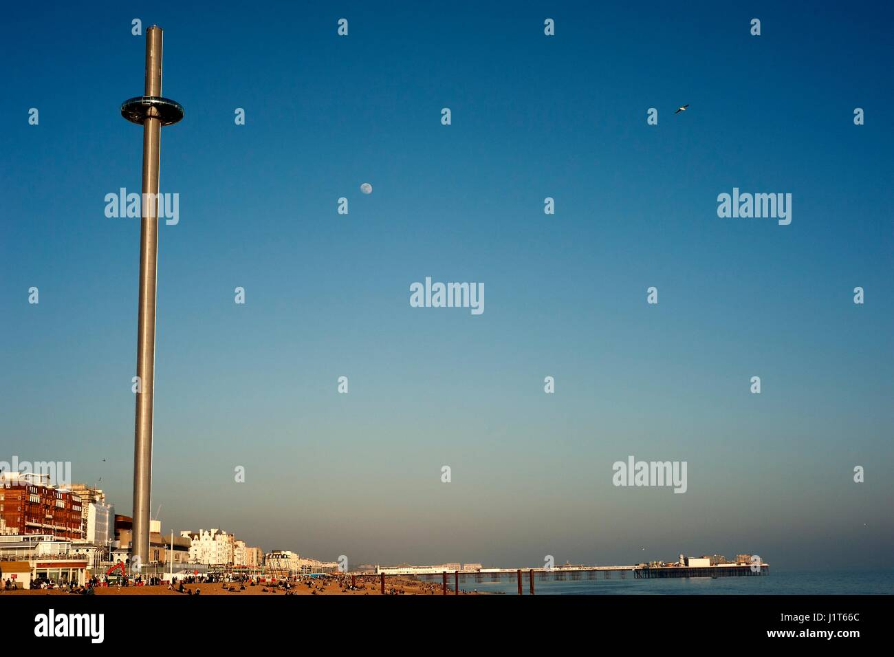 Brighton's i360, the world's tallest moving observation tower, opened in 2016 offering visitors 360 degree - Stock Image