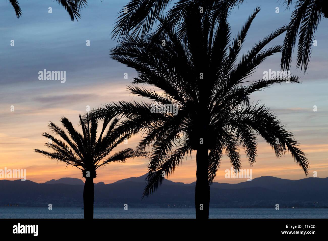 sundown at the beach, S´Arenal, Majorca, Spain Stock Photo