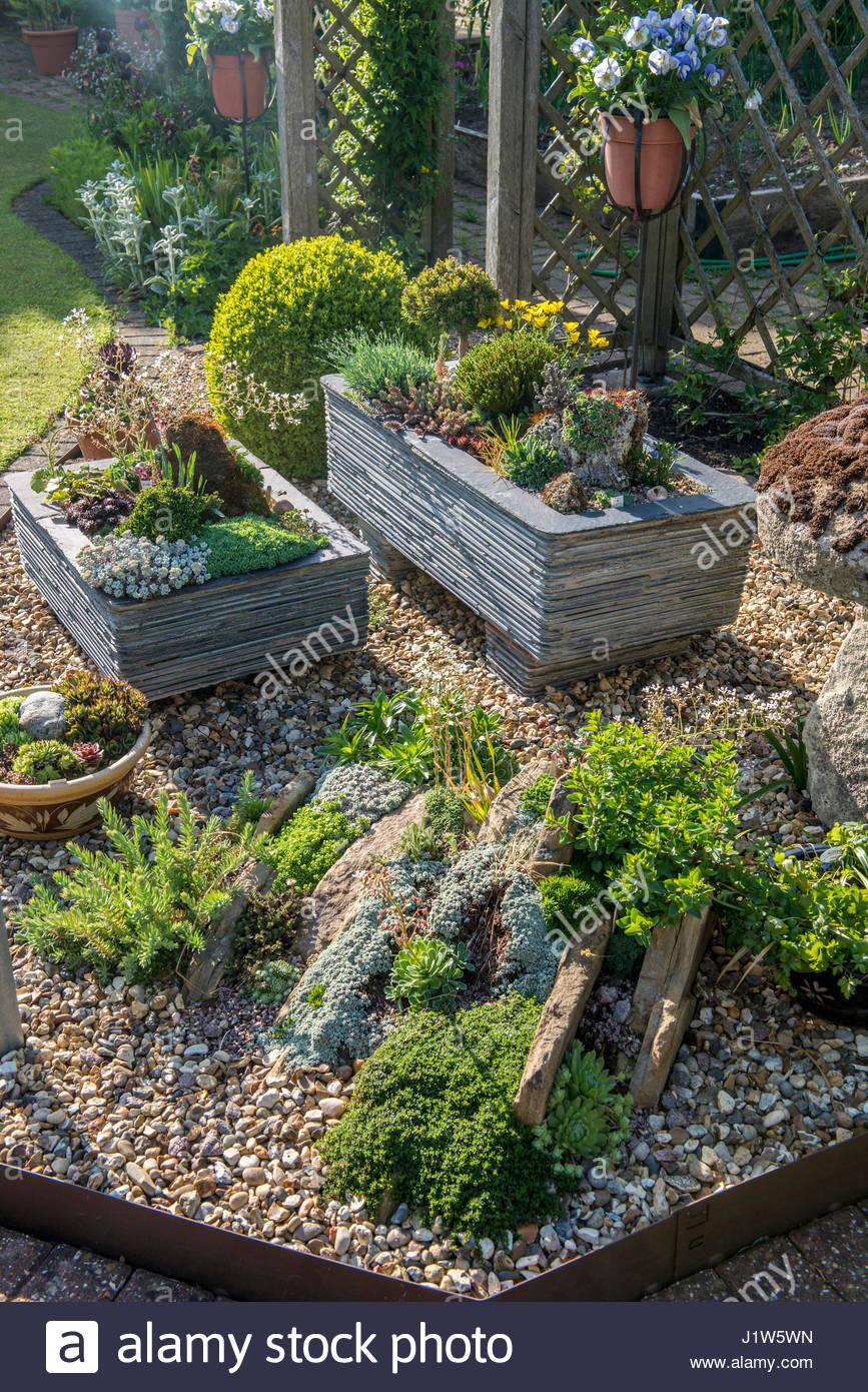 ALPINE GARDEN WITH TROUGHS AND CREVICE GARDEN   Stock Image