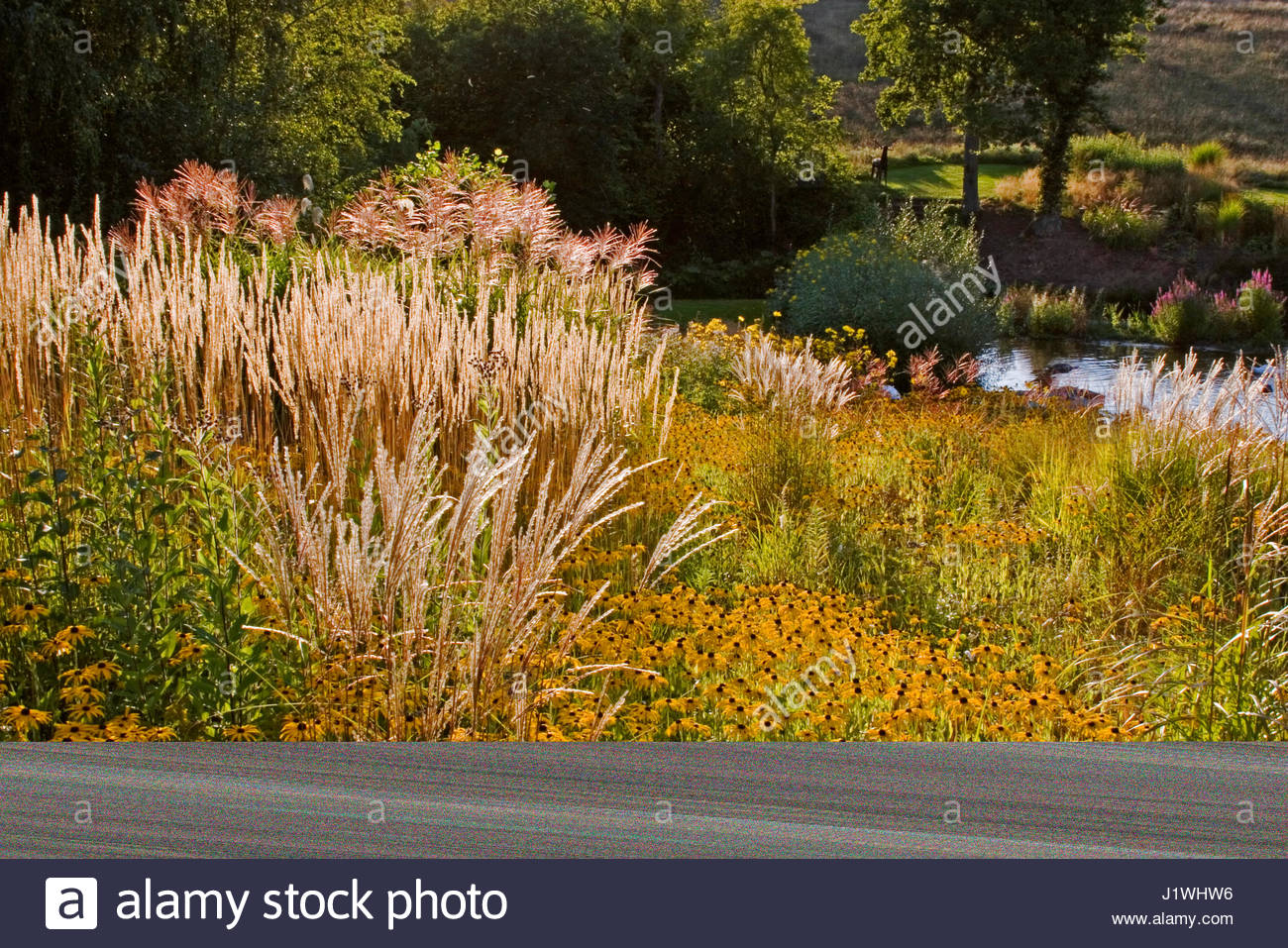 Attractive Farm Garden Photo - Brown Nature Garden ...