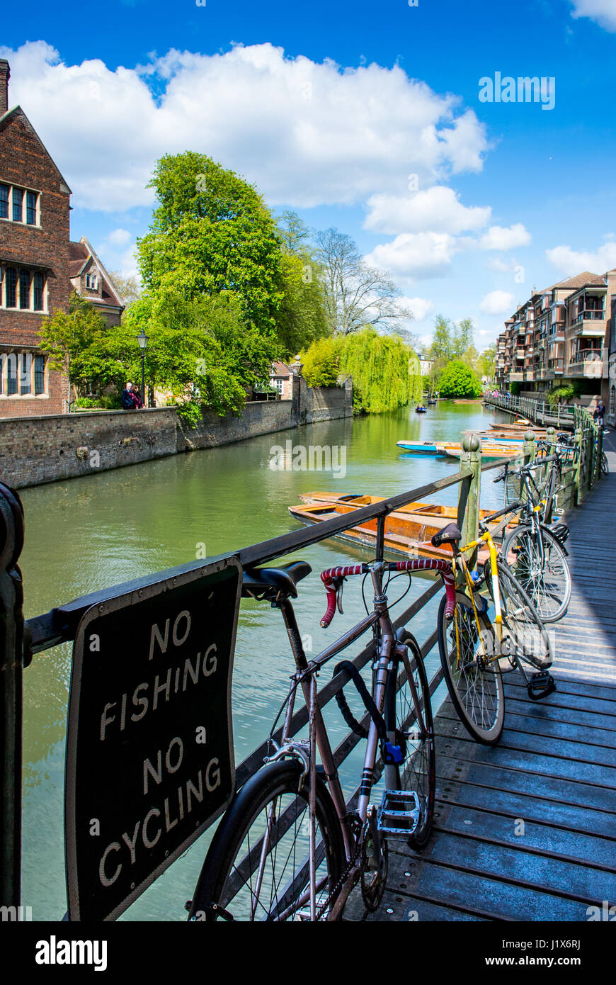 River punting in Cambridge Cambridgeshire England UK - Stock Image
