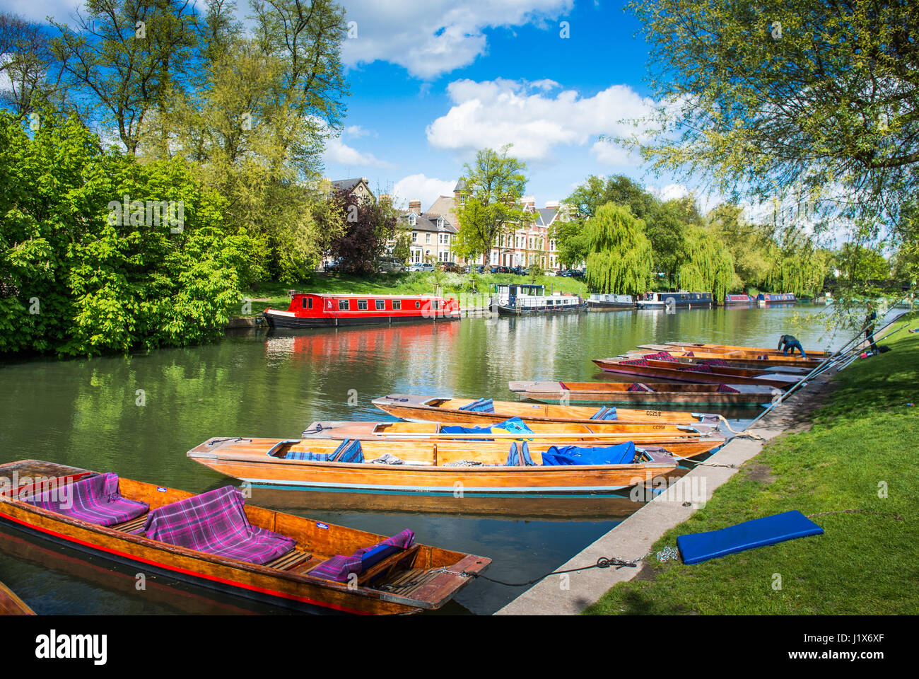 Punting on a river in Cambridge England UK - Stock Image