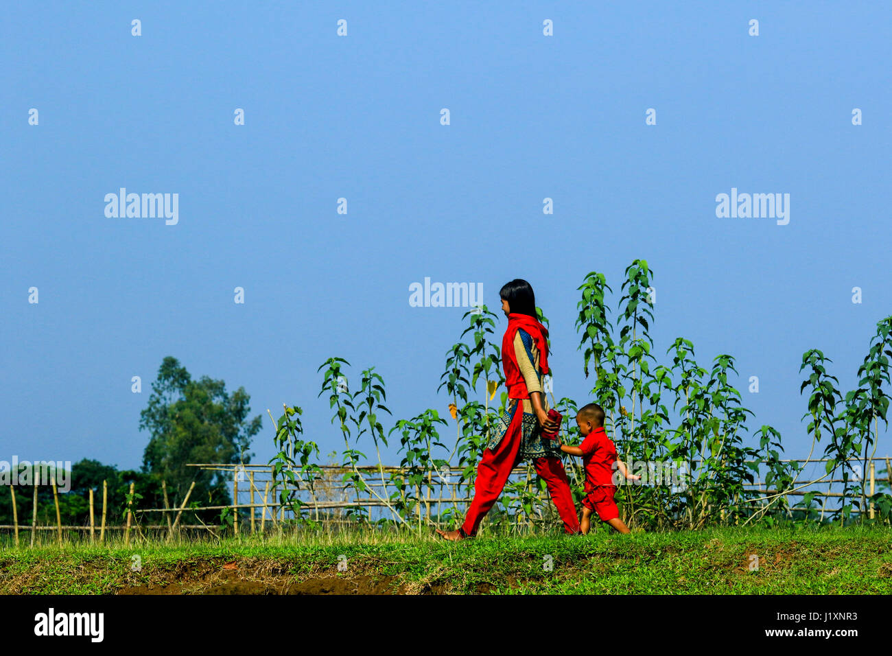 Siblings walk through the rural path at Gowainghat. Sylhet, Bangladesh. - Stock Image