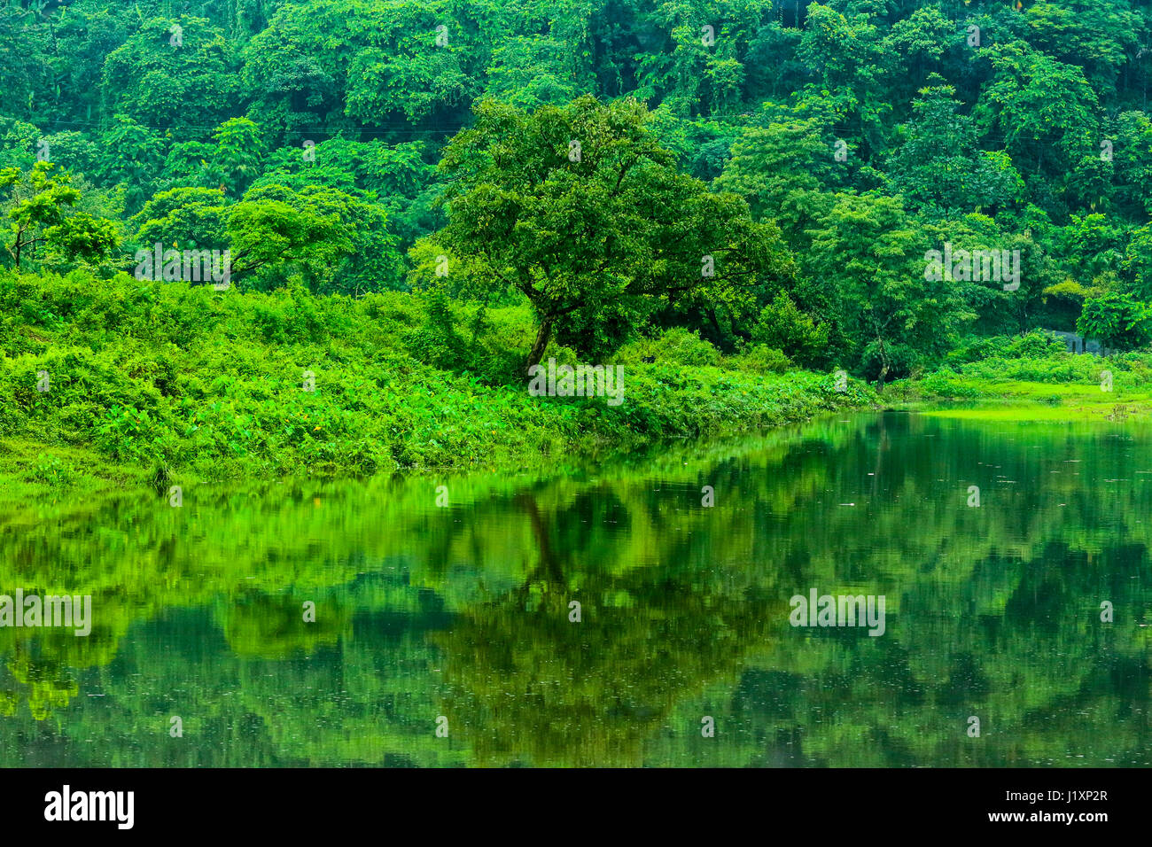 Landscape view of the Pangthumai – a beautiful village of